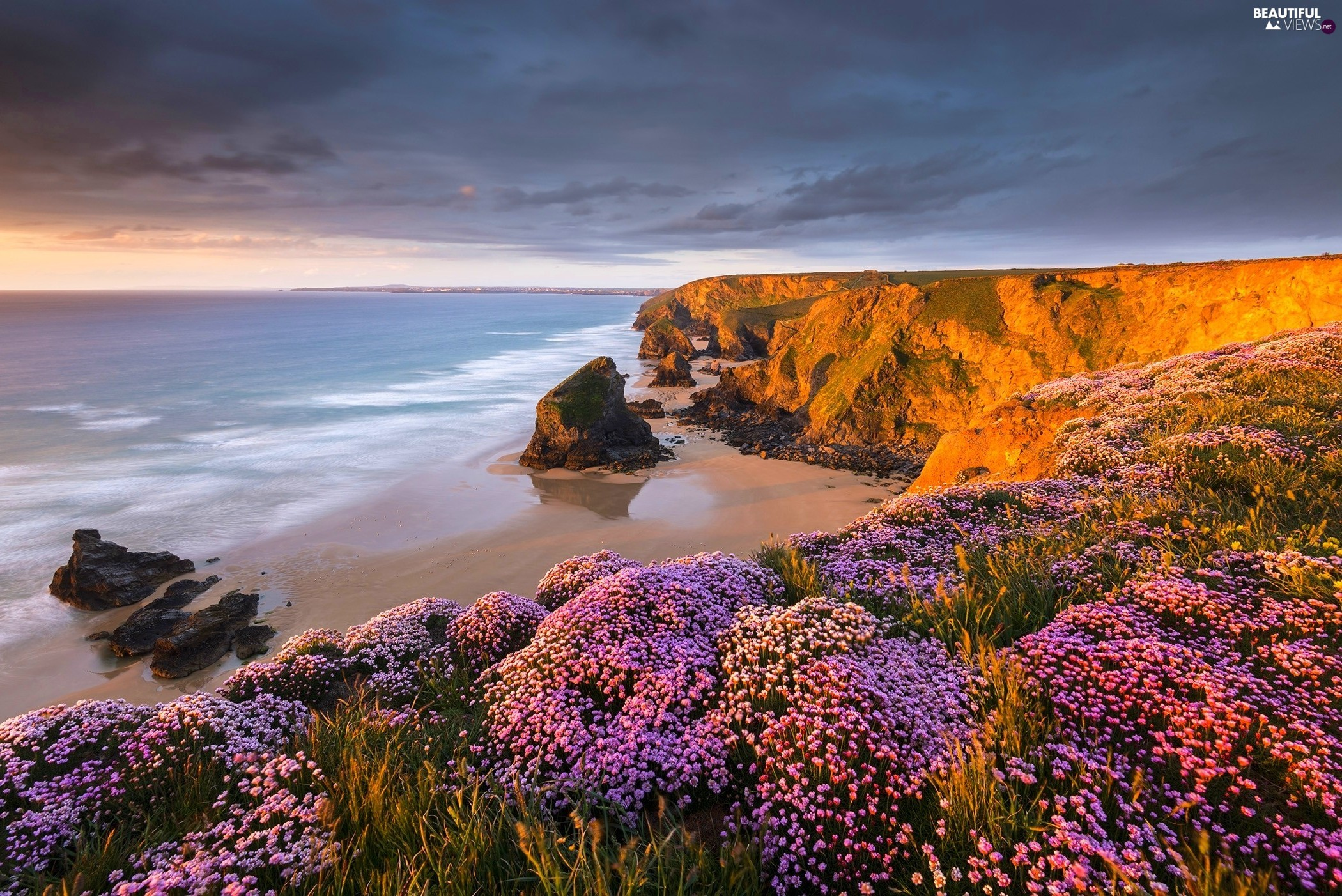 Flowers, clouds, rocks, cliff, sea