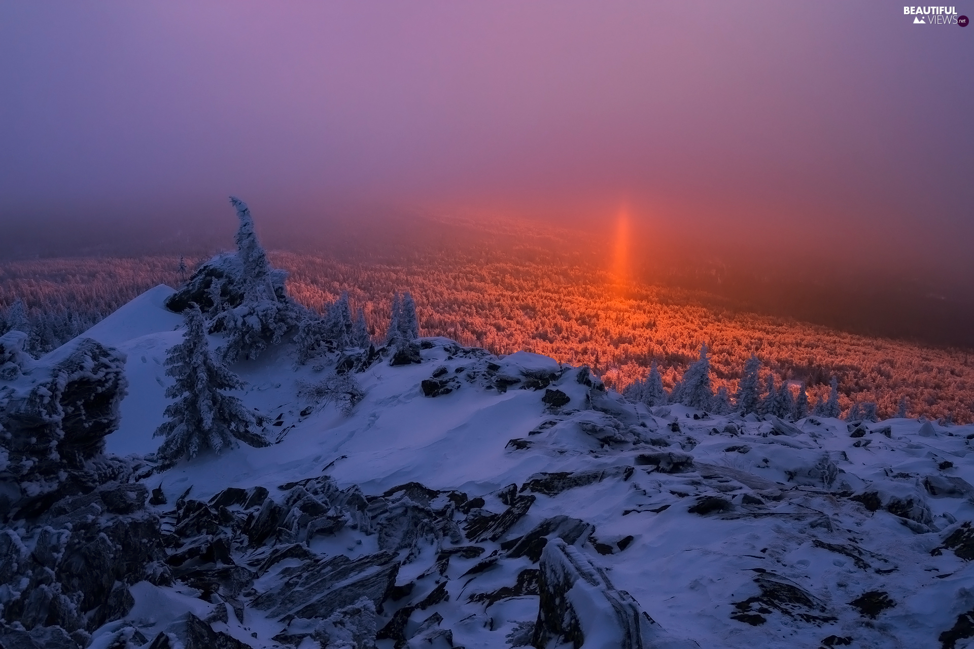trees, Mountains, Great Sunsets, mount, winter, viewes, Fog