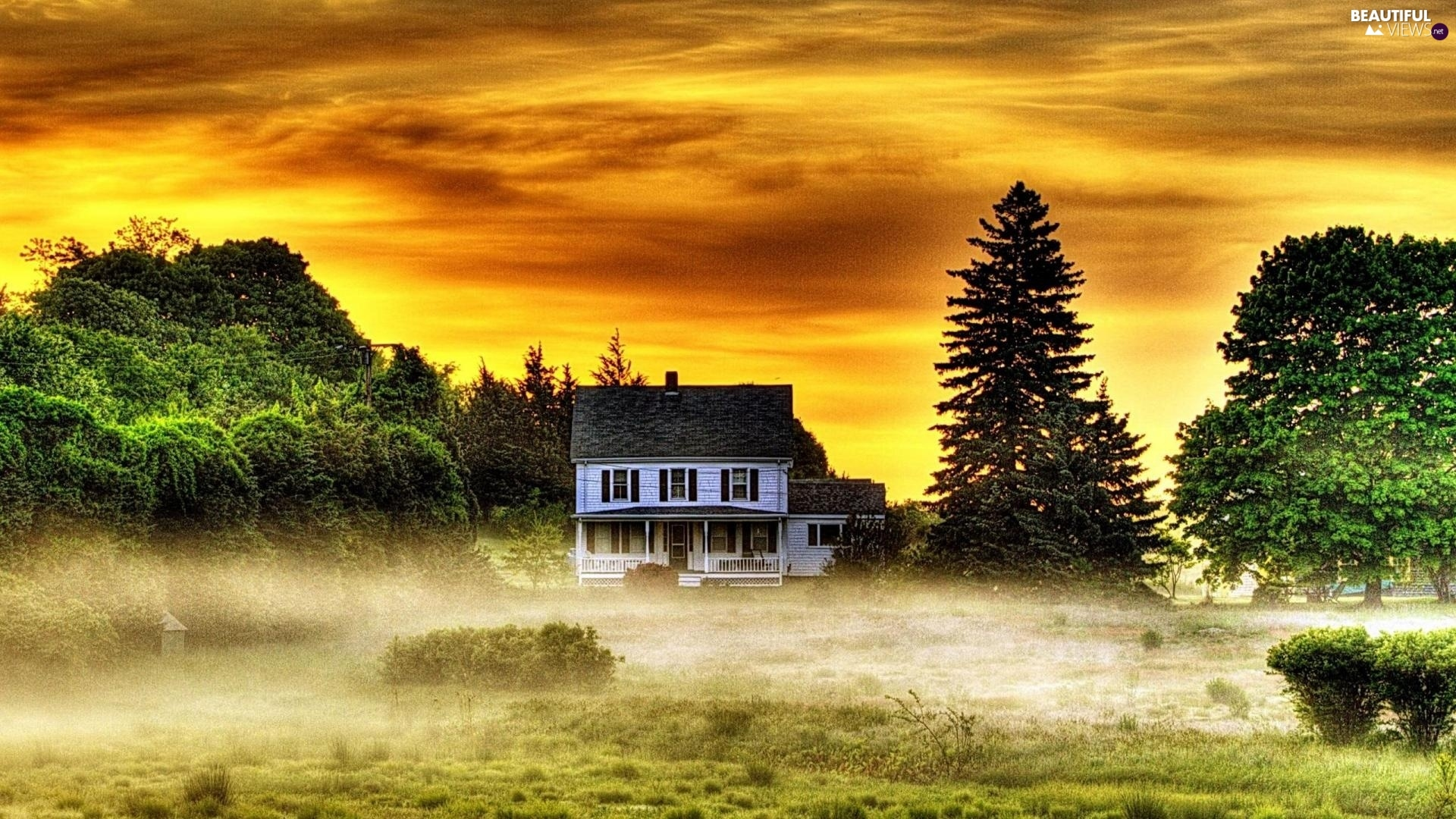 trees, west, Fog, house, viewes, sun