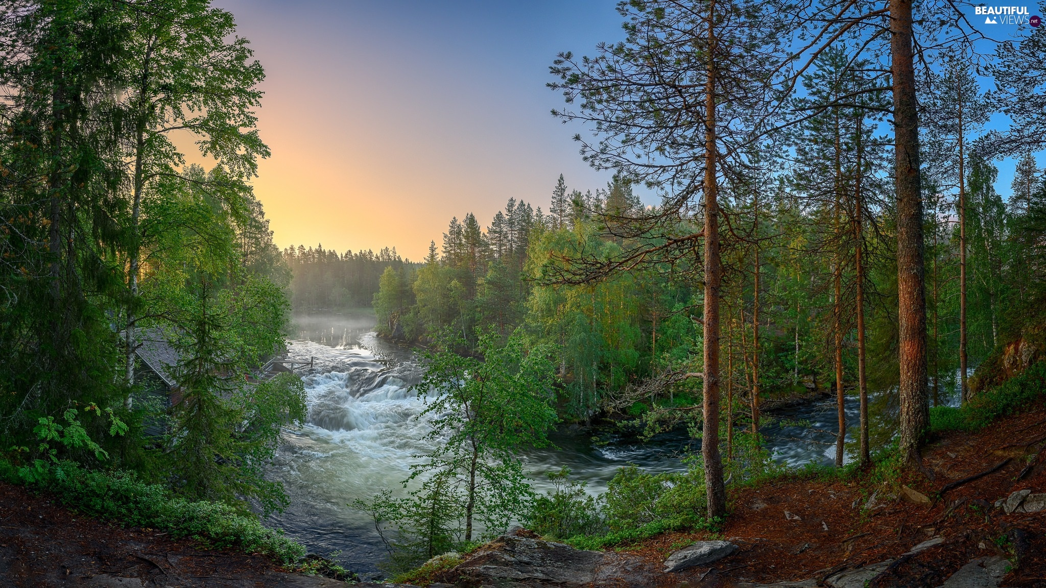 Lapland, Finland, Kitkajoki River, Oulanka National Park, trees, viewes, forest, River, Spring