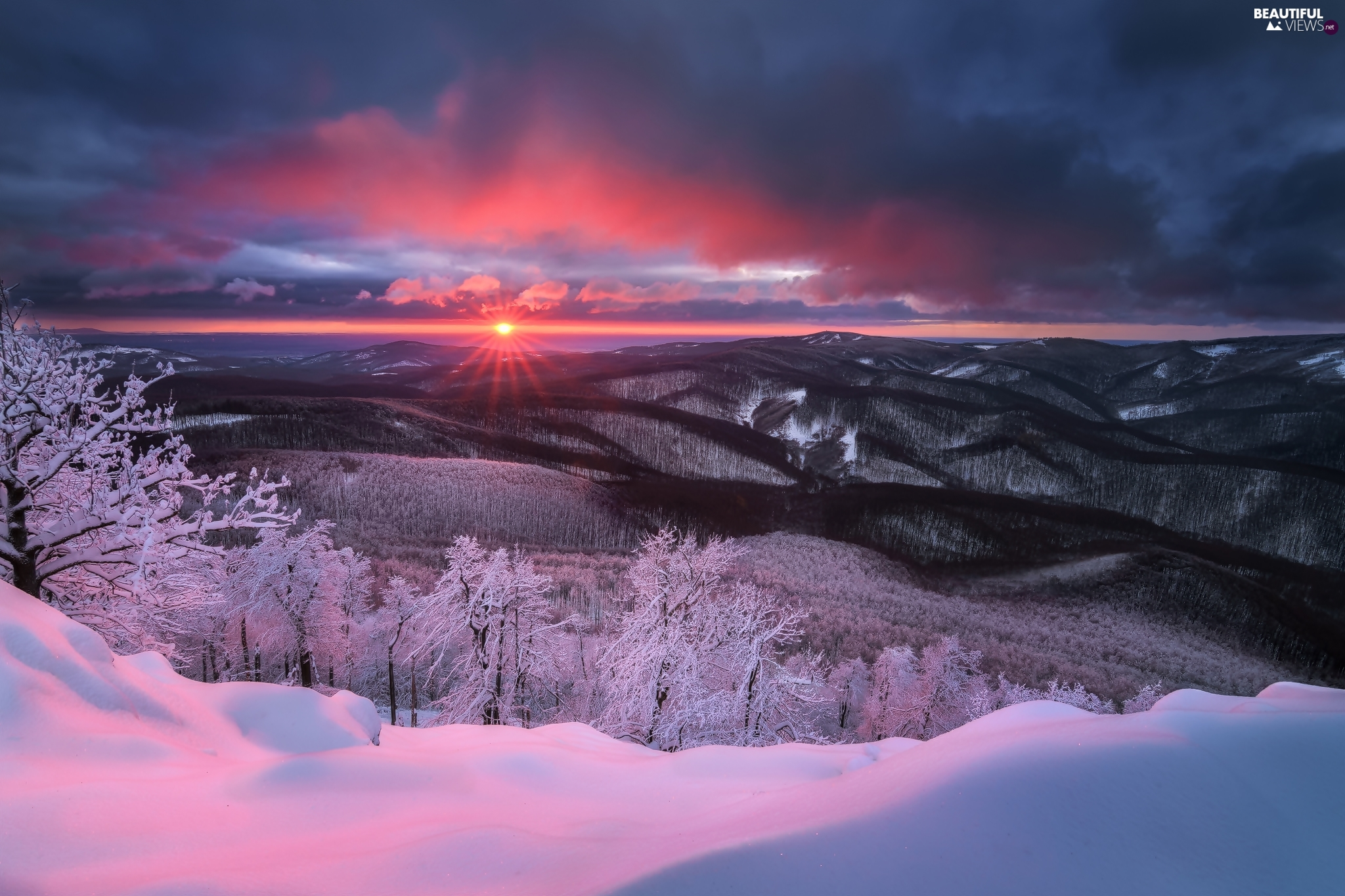 forest, Snowy, clouds, trees, Great Sunsets, winter, Mountains, viewes