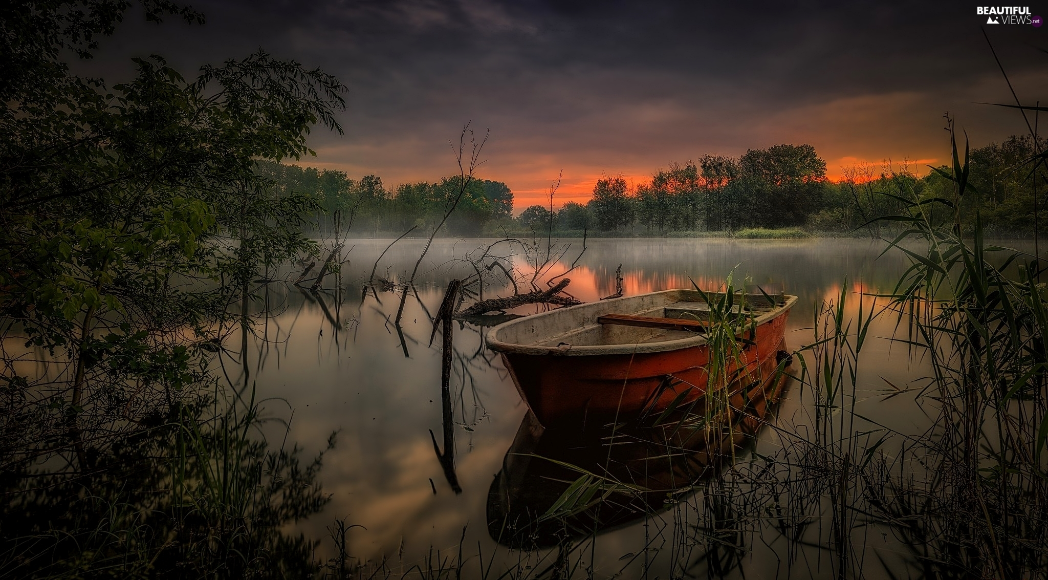 Fog, Boat, viewes, Great Sunsets, lake, trees, grass
