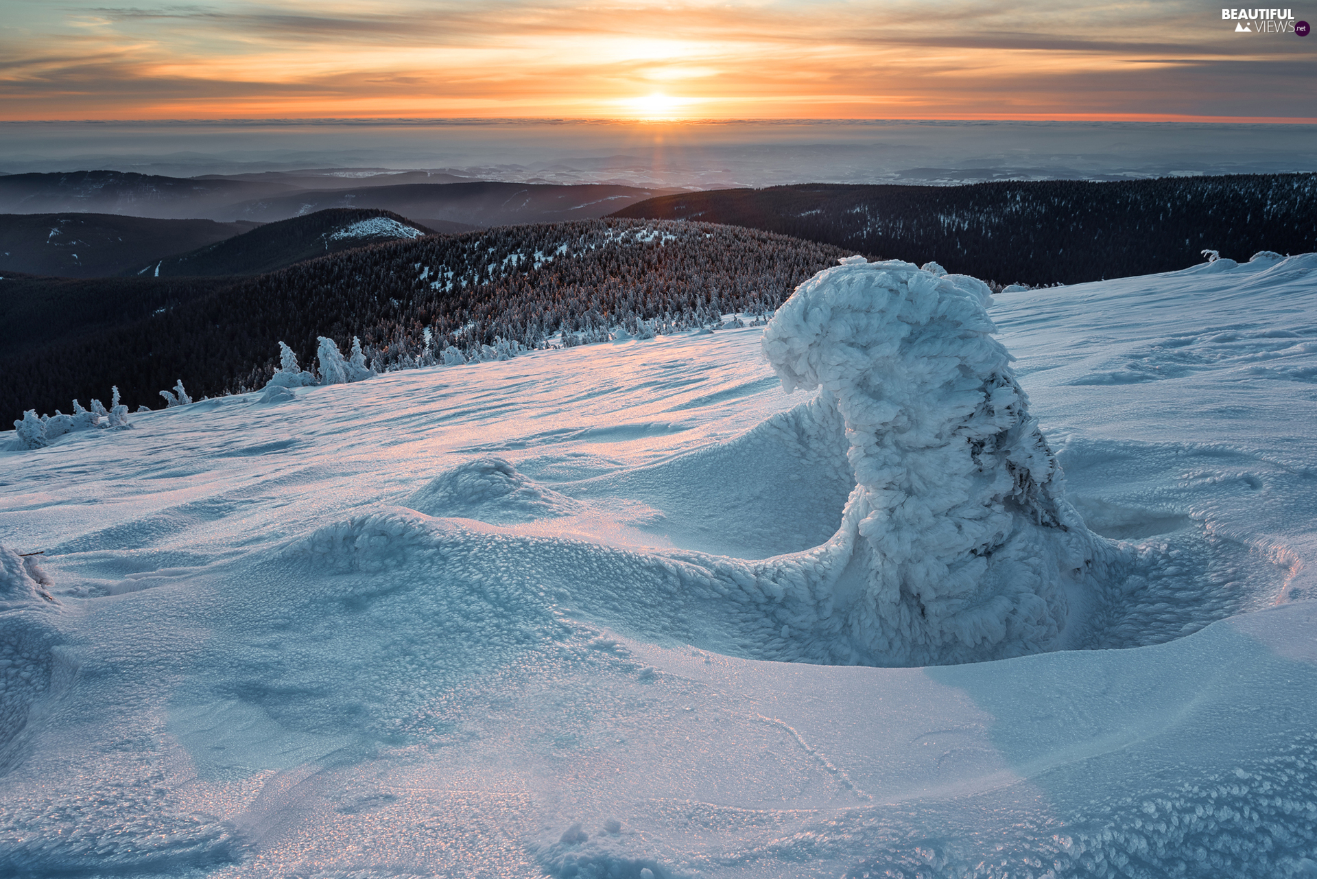 snowy, winter, viewes, Great Sunsets, trees, Mountains