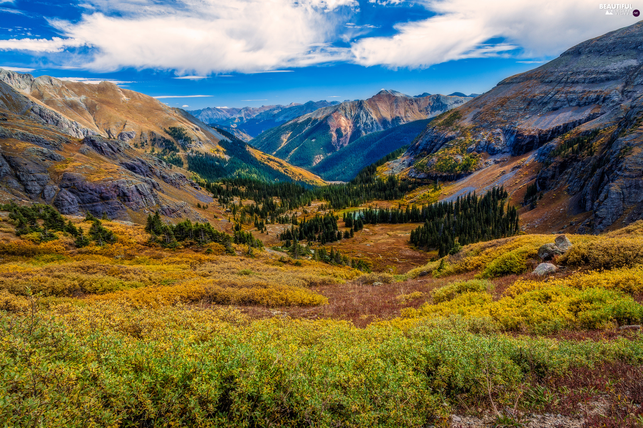 San Juan County, The United States, forest, clouds, San Juan Mountains, Colorado