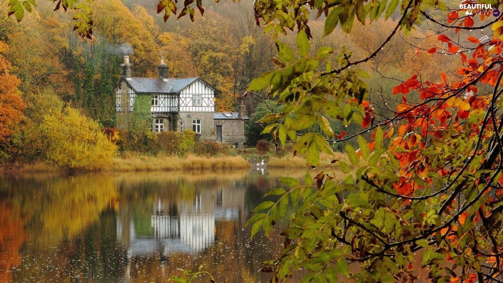 Autumn House Lake Woods