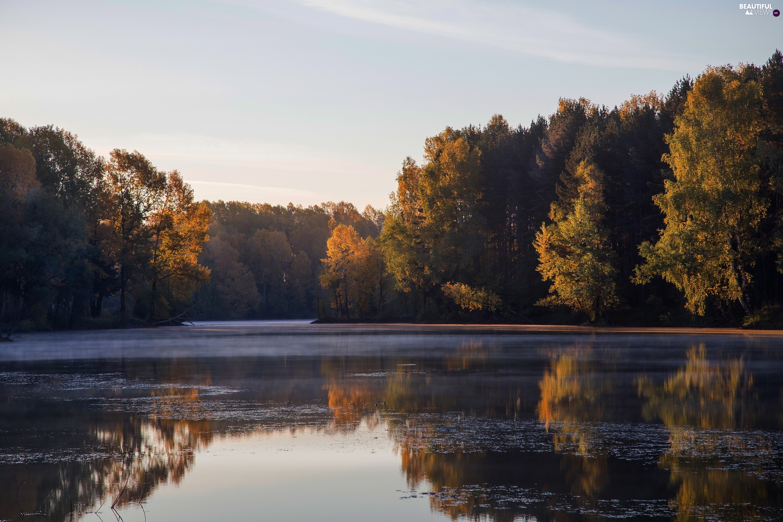 viewes, lake, forest, trees, autumn