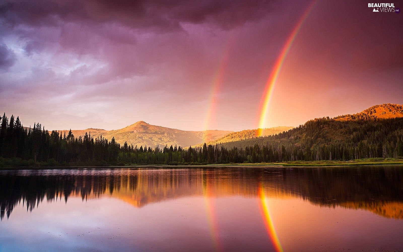 lake, Great Rainbows, forest, forest, Mountains