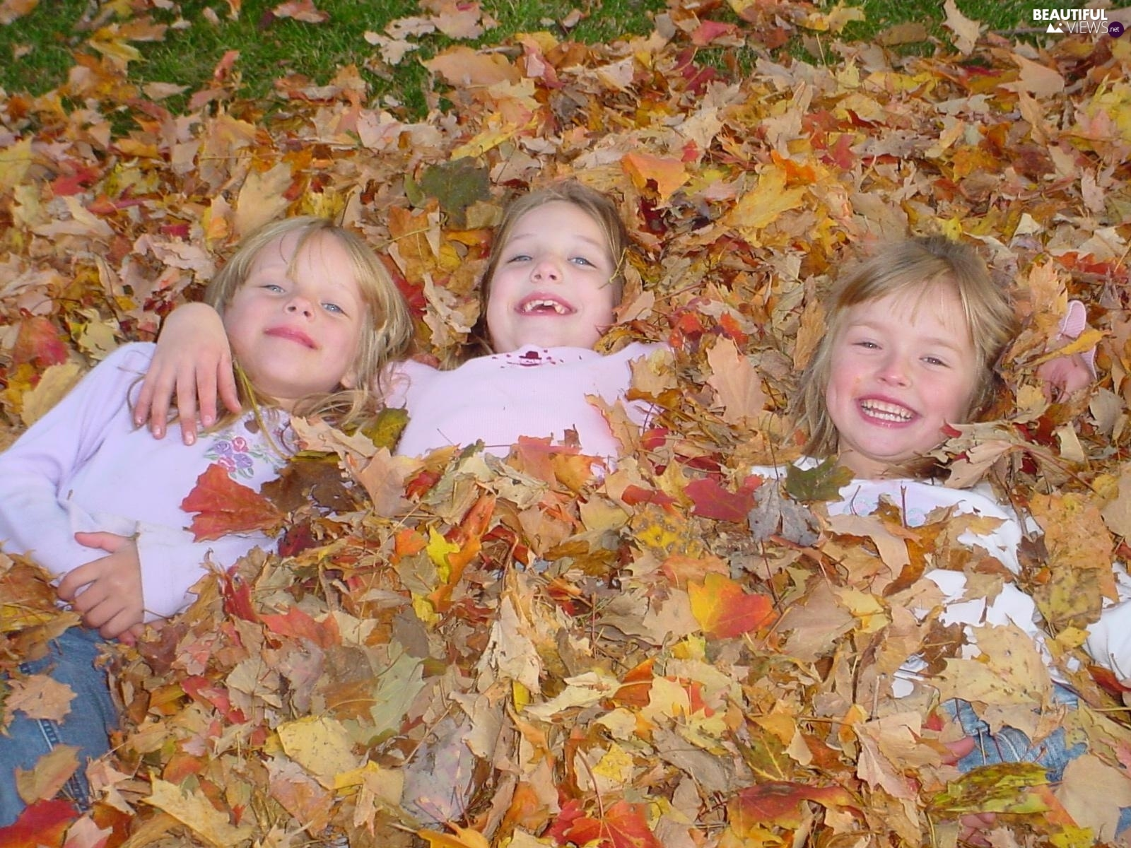 Leaf, Laugh, girls, autumn, Three