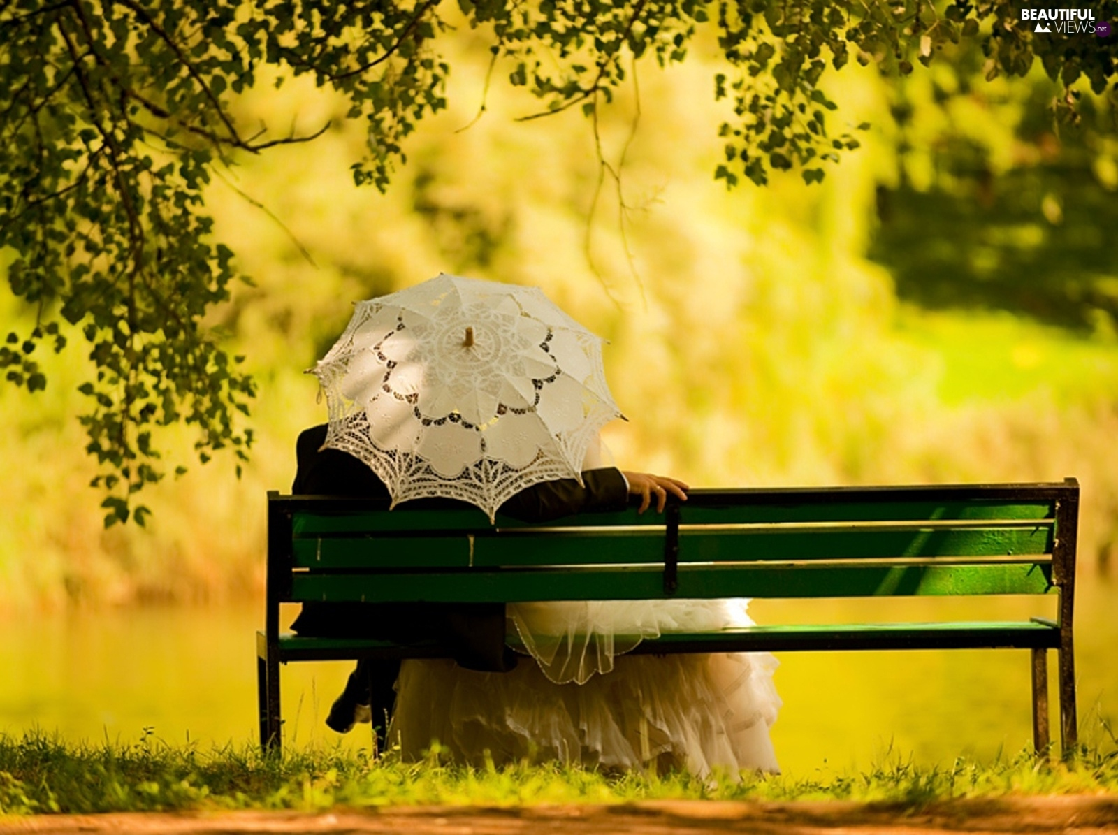 Park, Steam, lovers, Bench