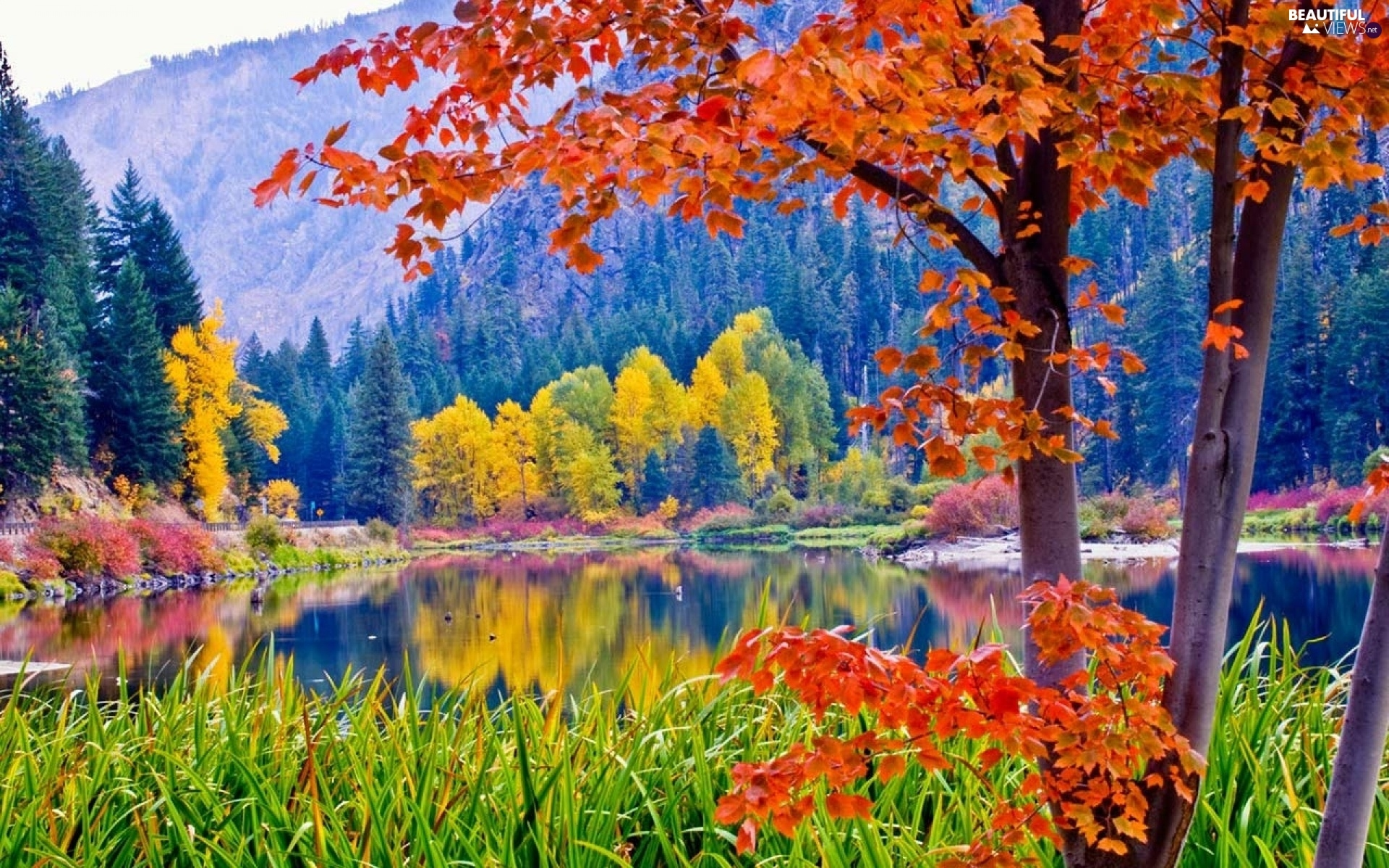 autumn, lake, Mountains, Park