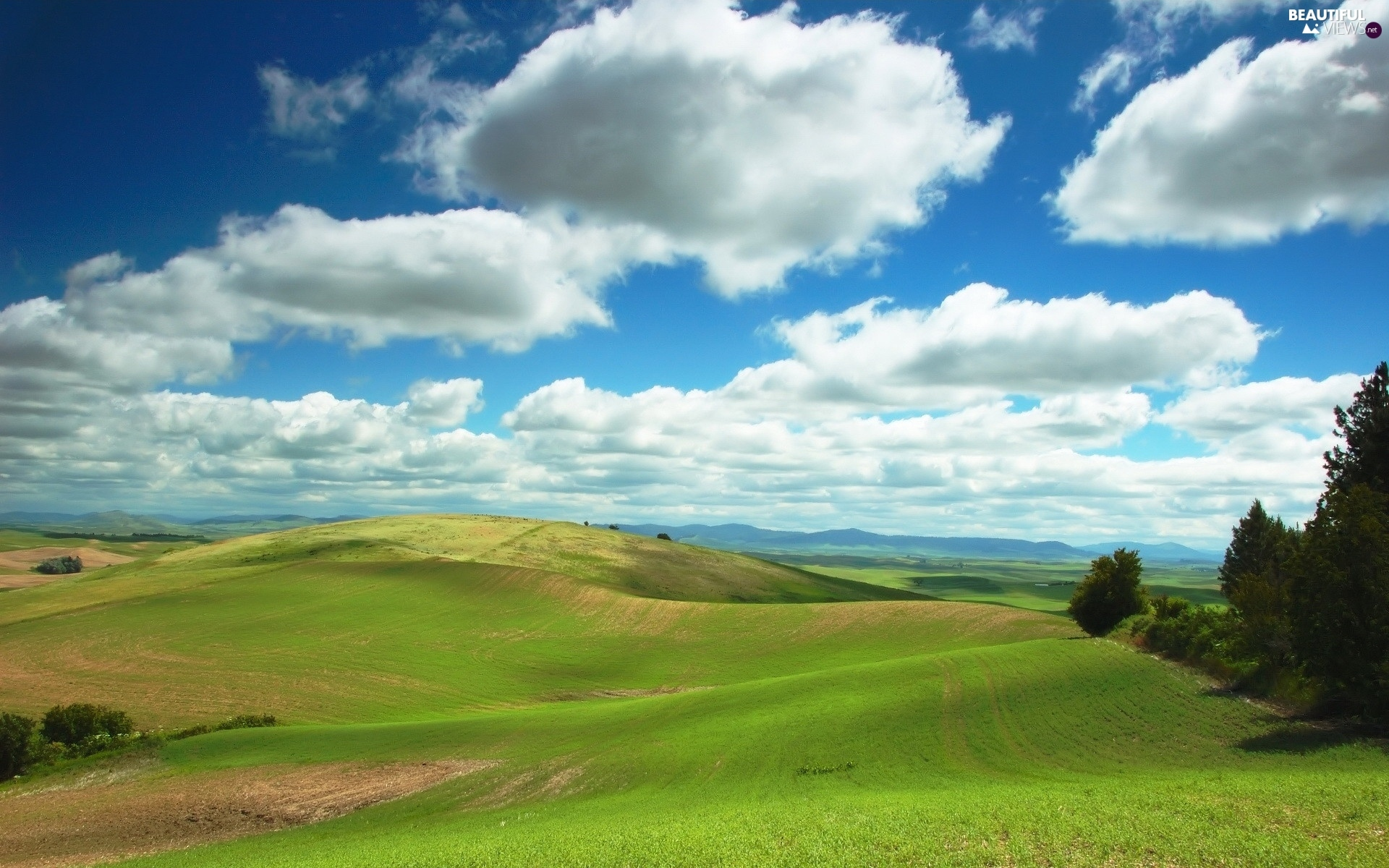 trees, panorama, Mountains, clouds, viewes, field