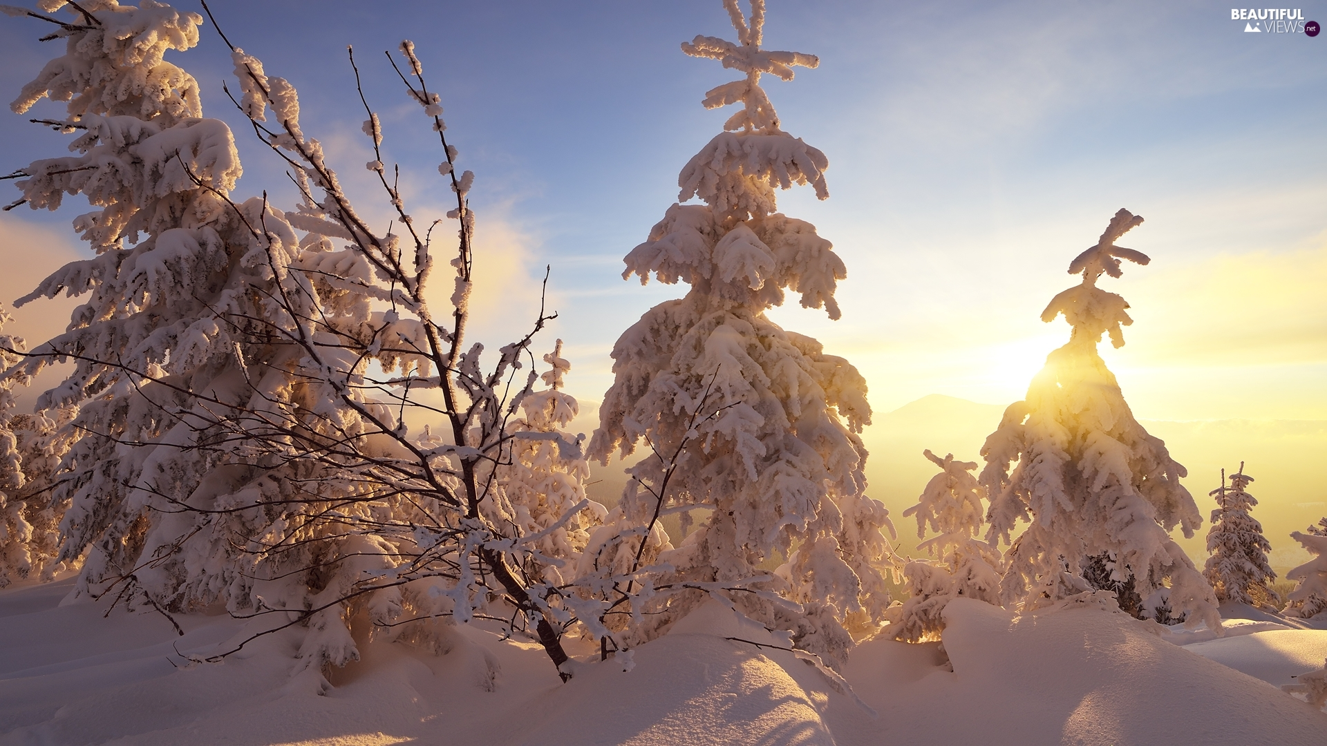 winter, Ukraine, Spruces, Great Sunsets, Snowy, Carpathian Mountains