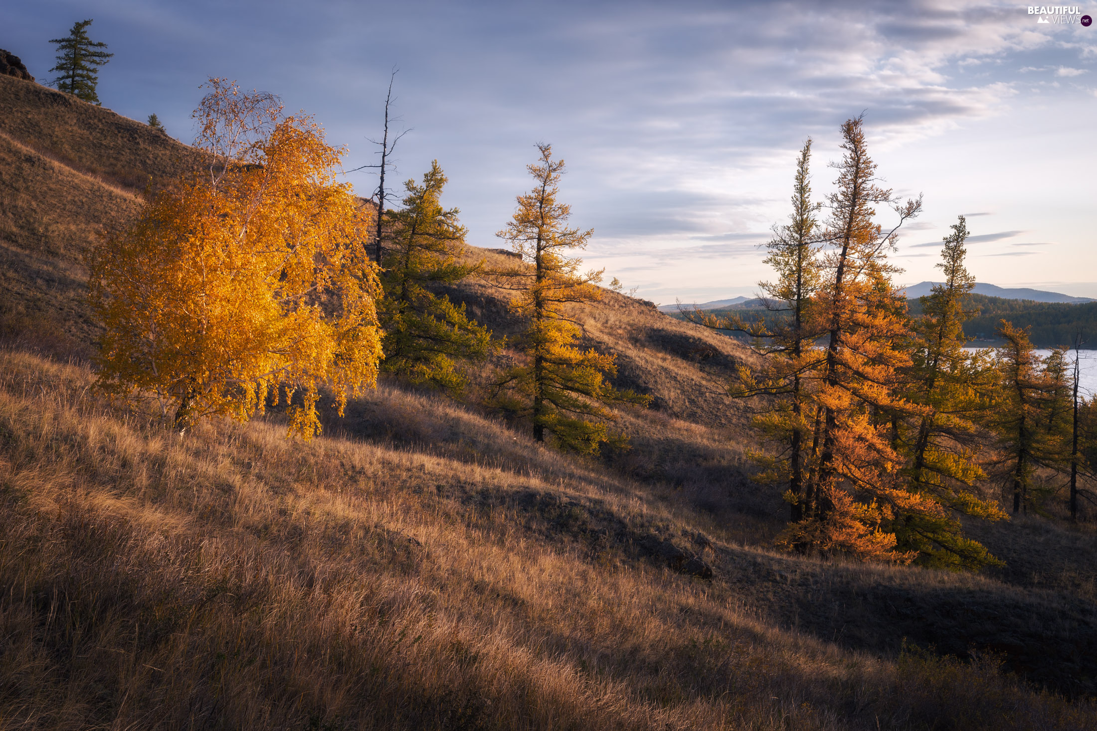 The Hills, trees, lake, viewes, autumn, grass, Mountains