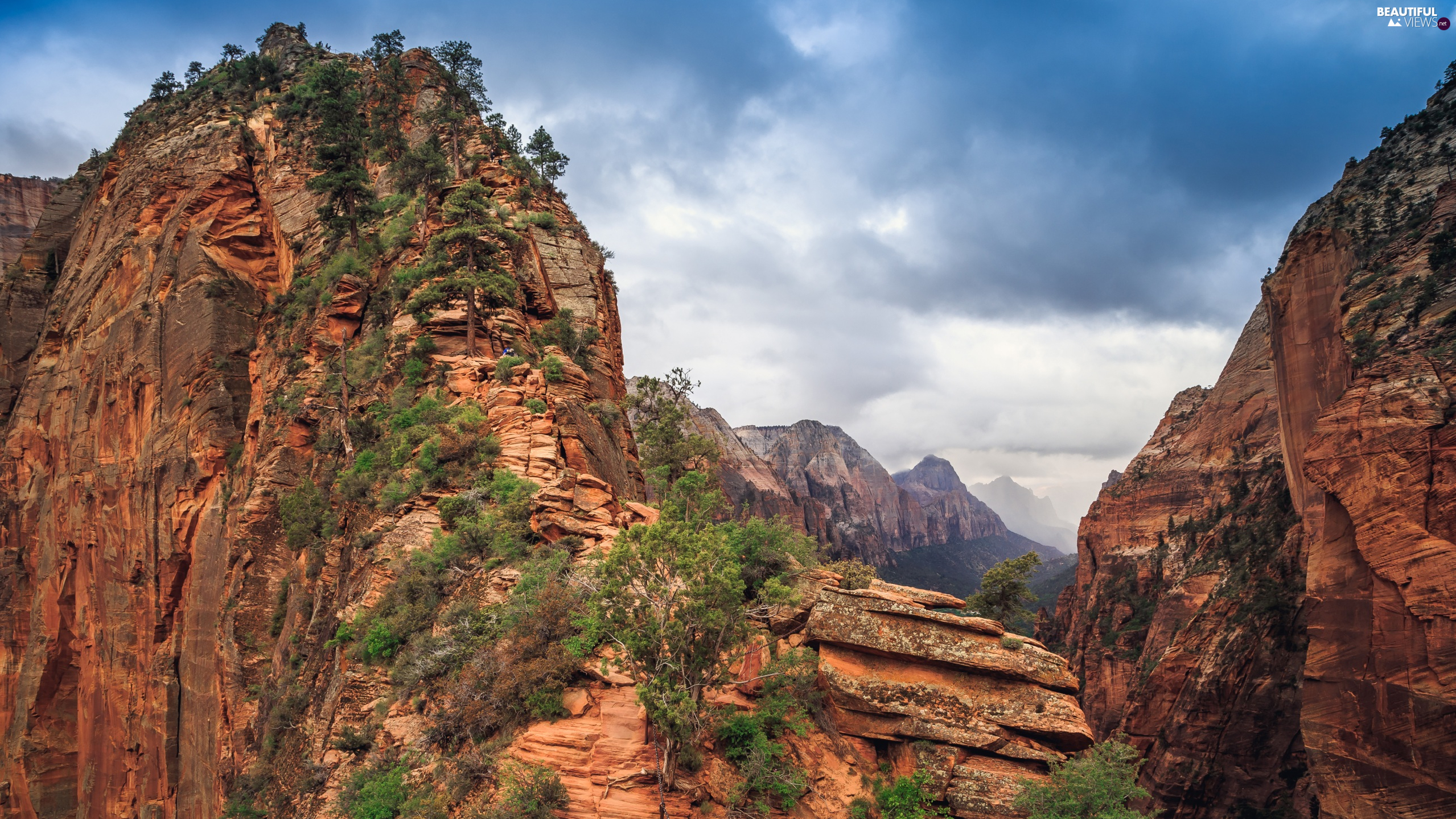 canyon, Rock Formation, Utah State, Angels Landing, Zion National Park, rocks, The United States