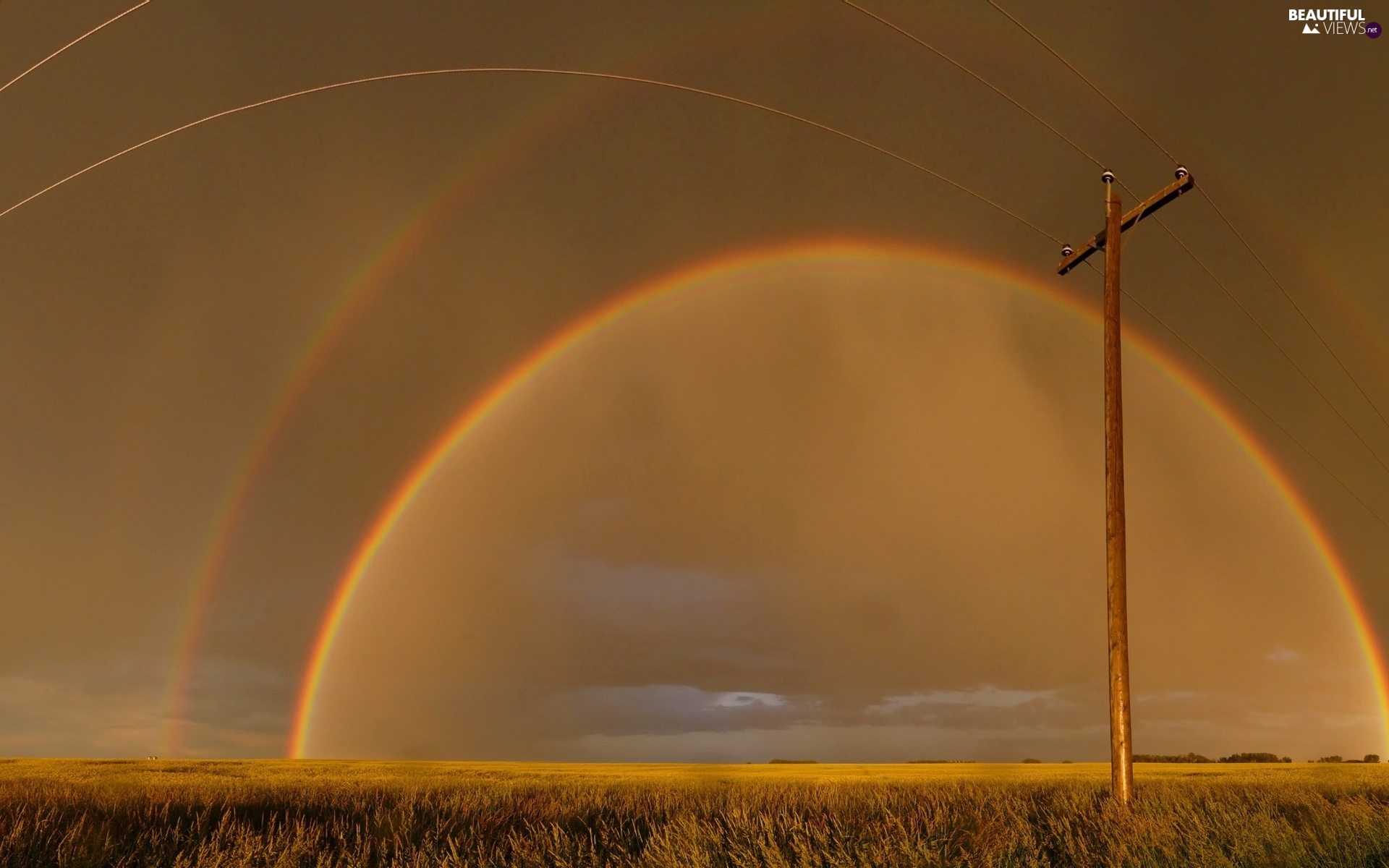Great Rainbows, Field, pile