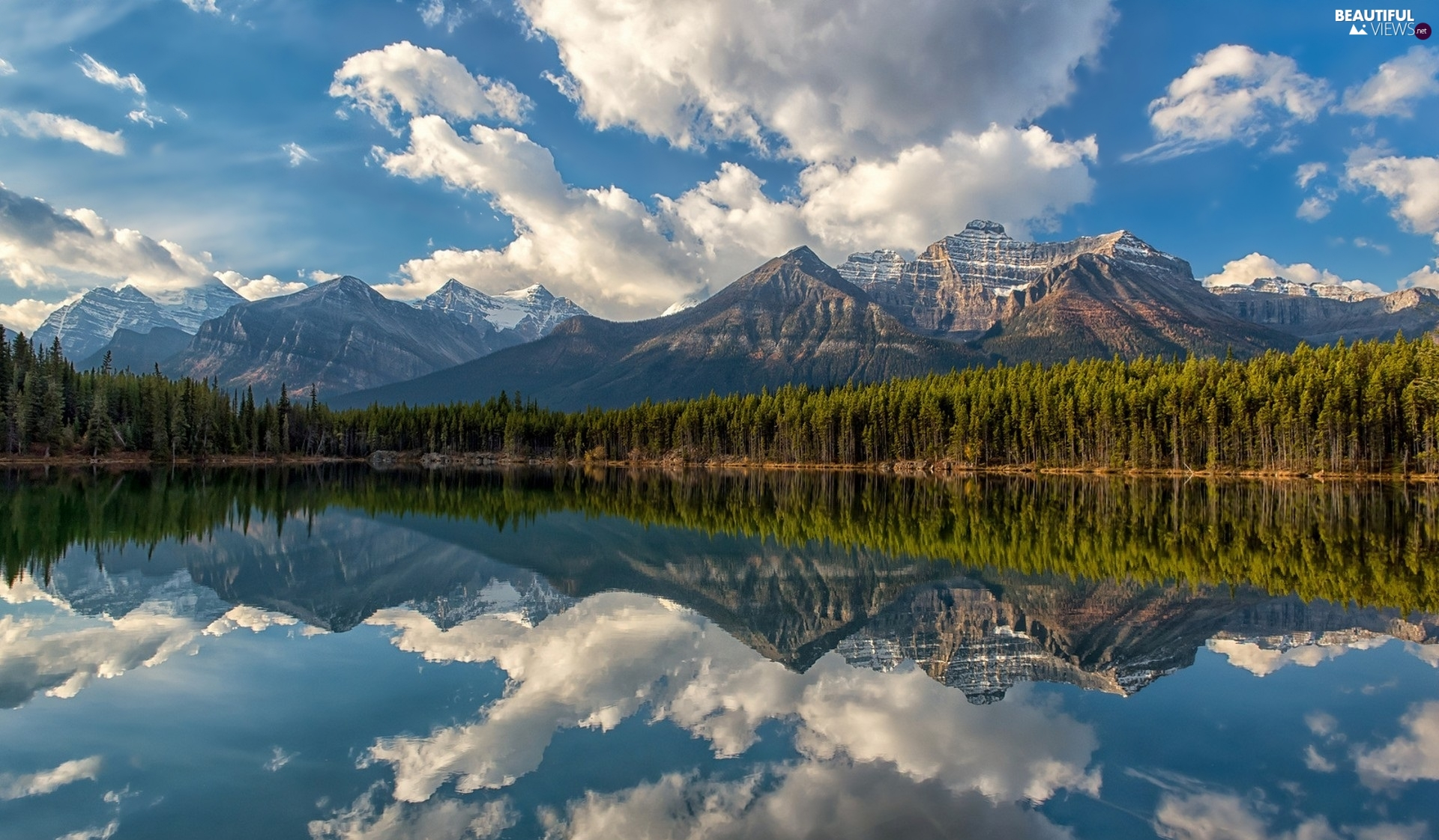 clouds, reflection, Mountains, Spruces, lake