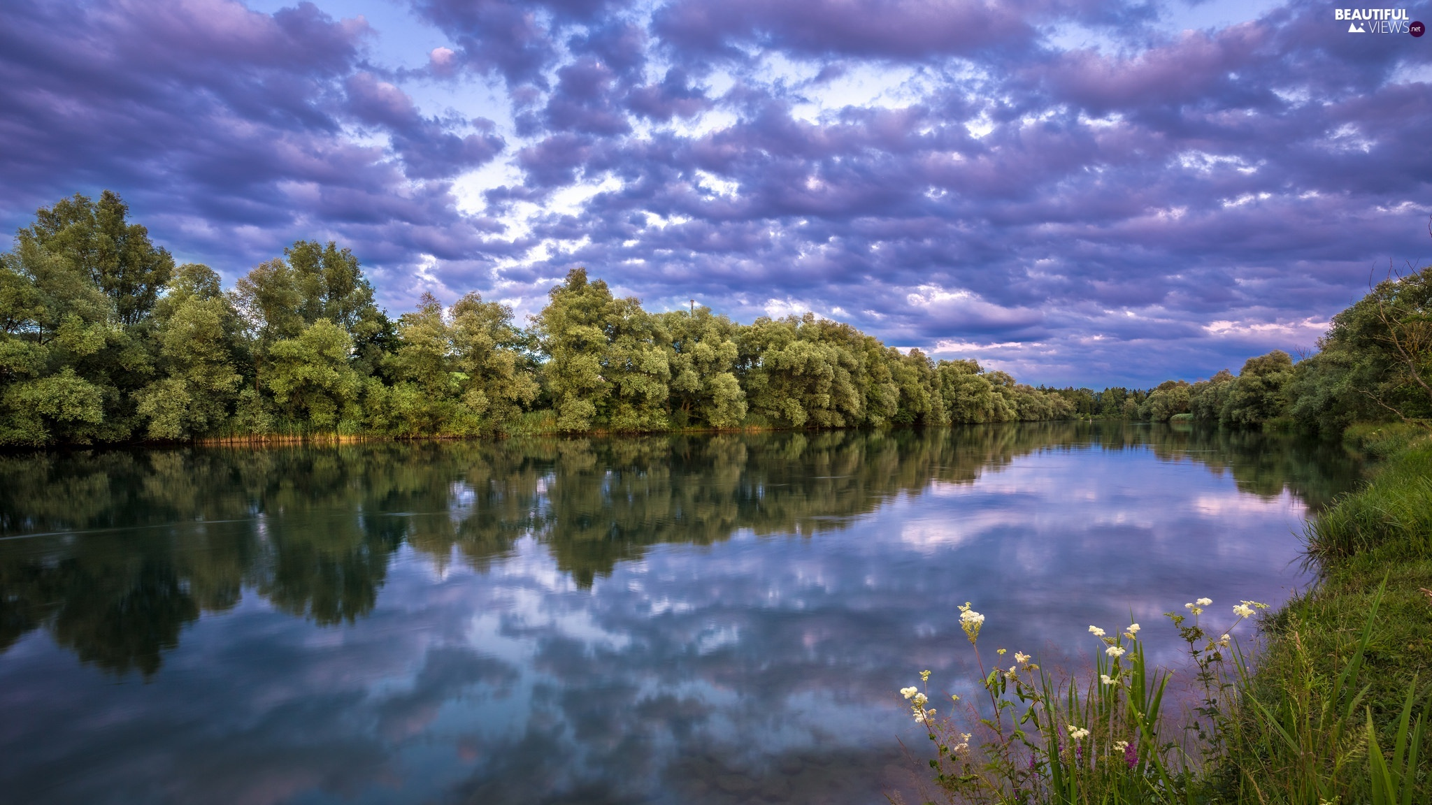 viewes, River, clouds, reflection, Sky, trees