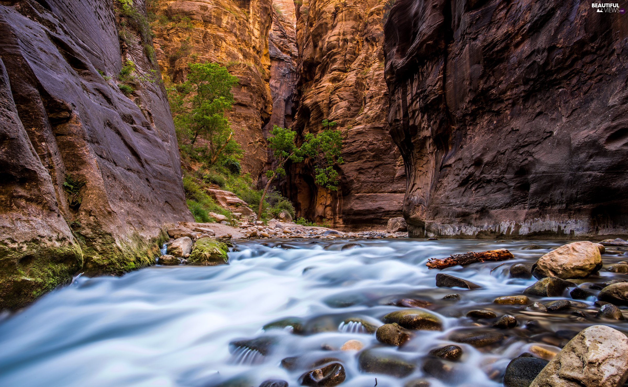 Zion National Park, The United States, rocks, Virgin River, Zion Narrows Canyon, Utah State