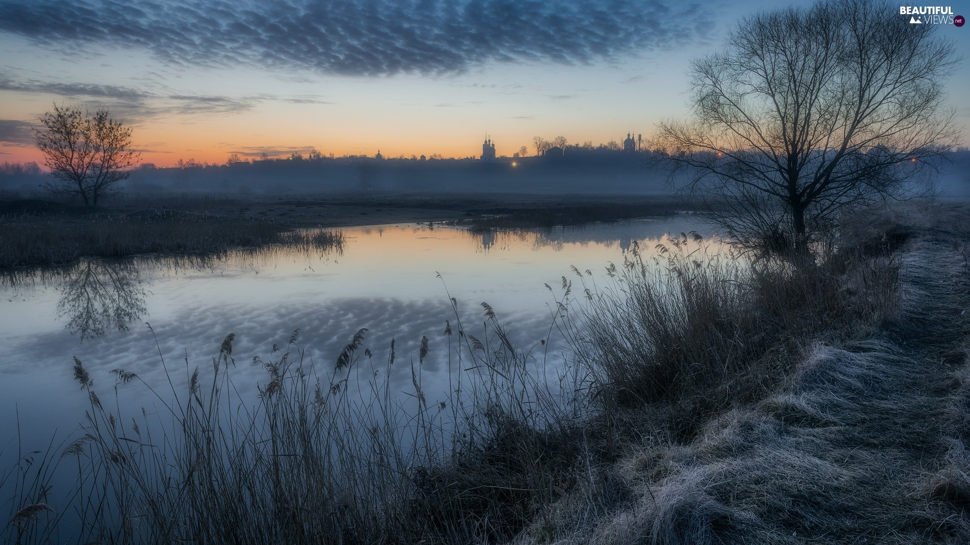 Fog, Sunrise, viewes, River, morning, trees, rushes