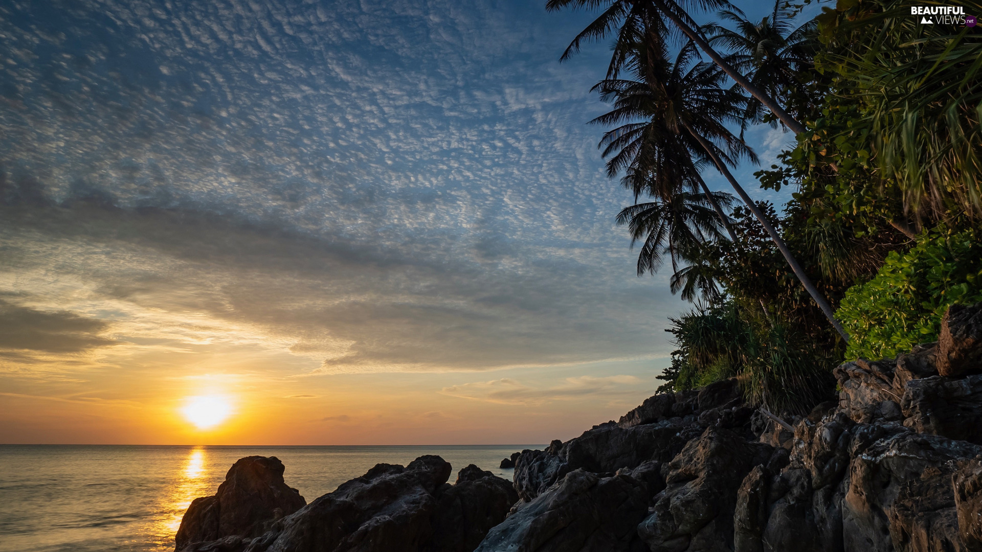 Great Sunsets, clouds, rocks, Palms, sea