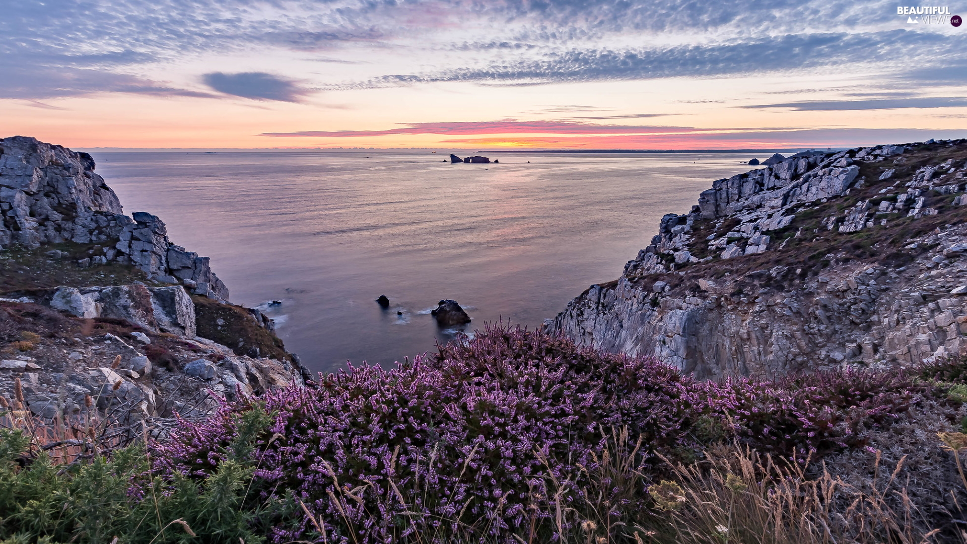 Great Sunsets, heathers, rocks, clouds, sea