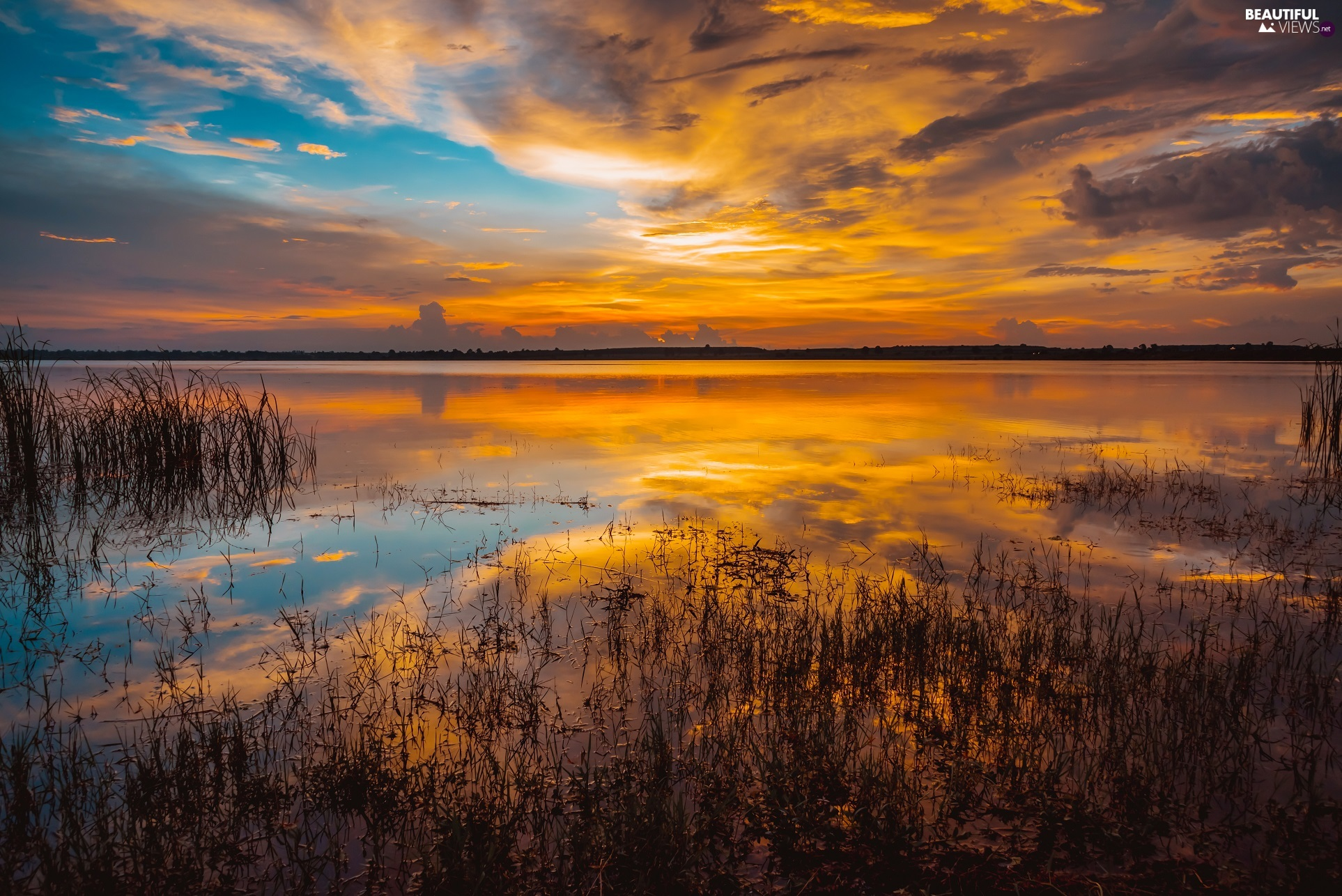 clouds, reflection, lake, rushes, Great Sunsets