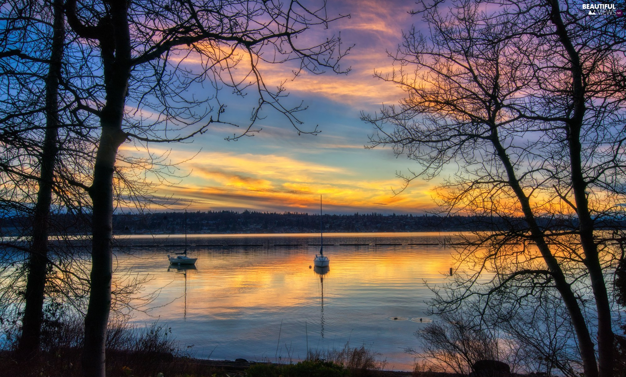 Sunrise, Sailboats, trees, viewes, lake