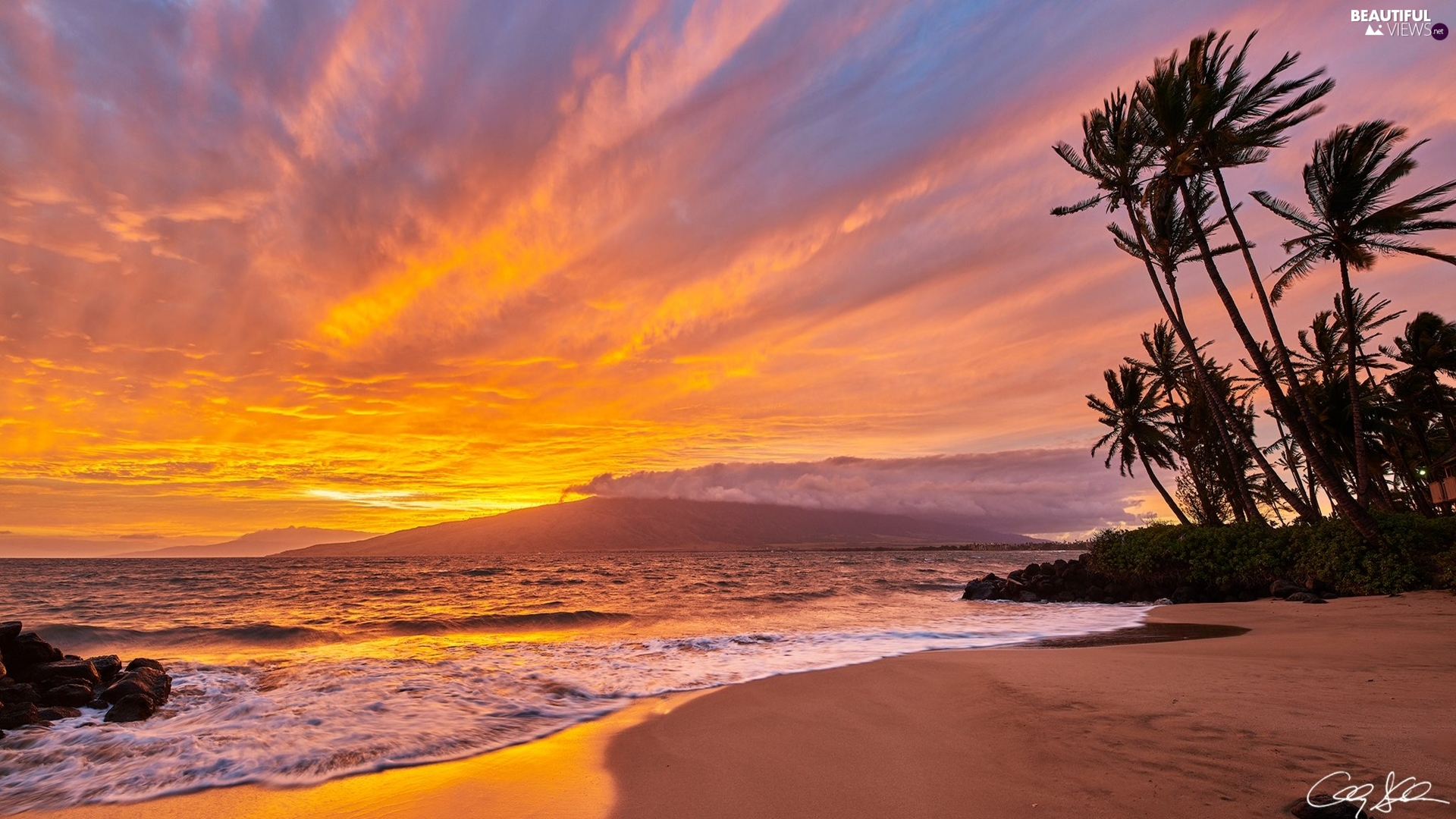 sea, Aloha State Hawaje, Great Sunsets, Beaches, Palms, Maui Island