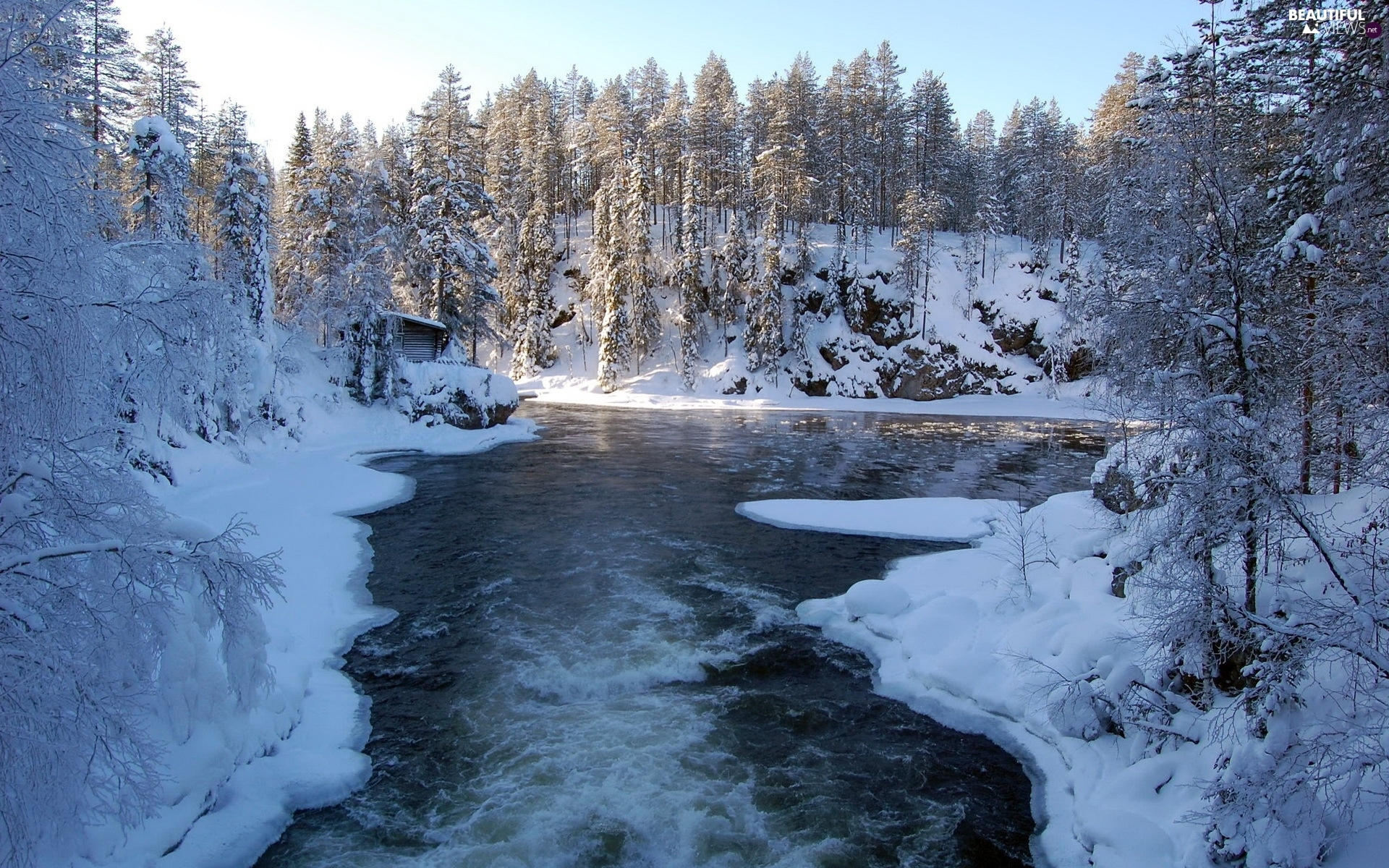 River, viewes, snow, trees