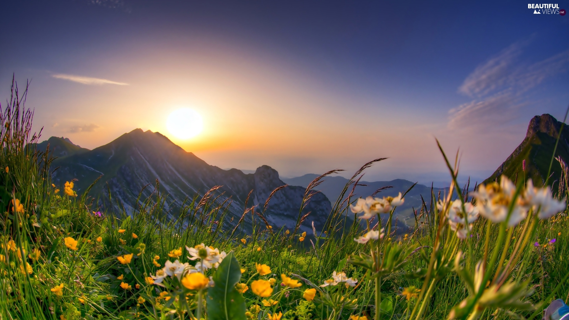Sunrise, Spring, Meadow, Flowers, Mountains