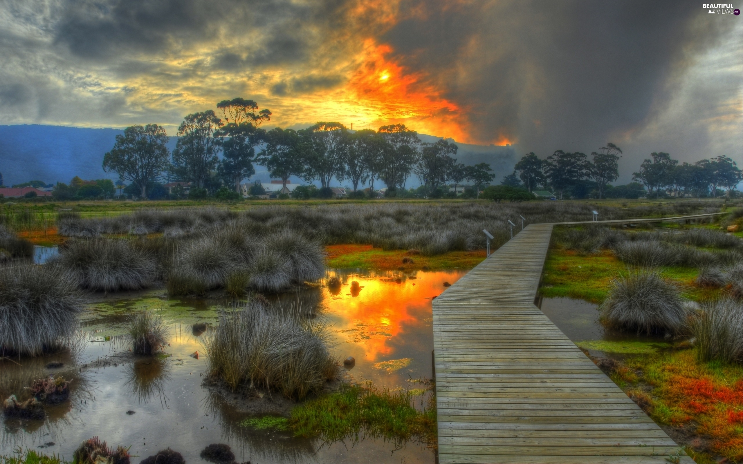 The setting, sun, by, swamp, footbridge