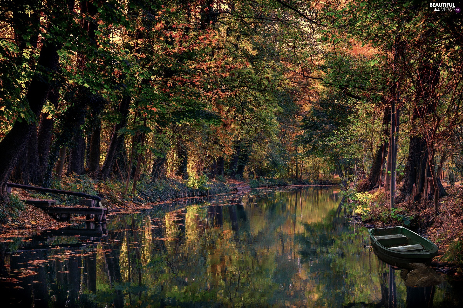 viewes, River, Boat, trees, canal, forest, autumn