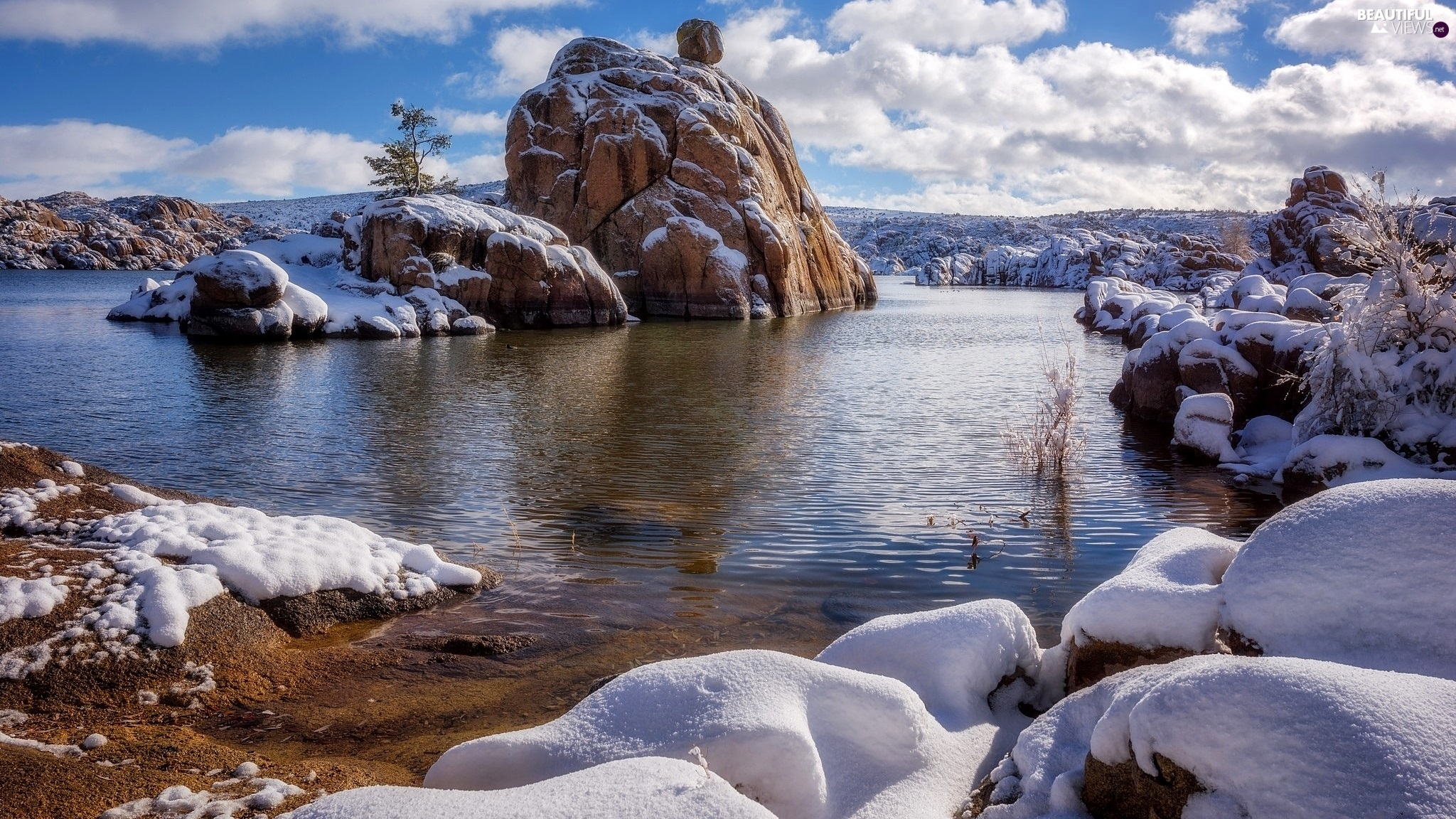 snow, trees, lake, rocks, winter