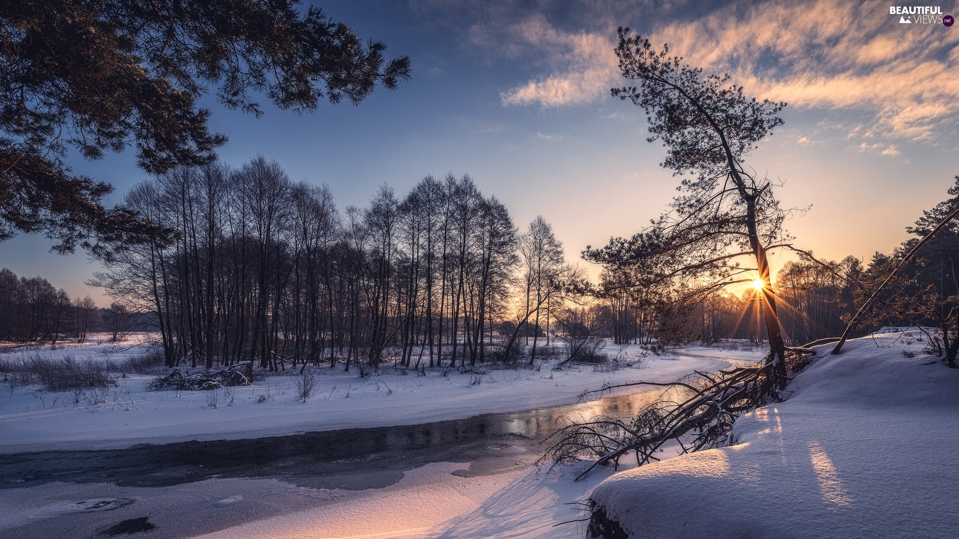 trees, rays of the Sun, River, snow, viewes, winter