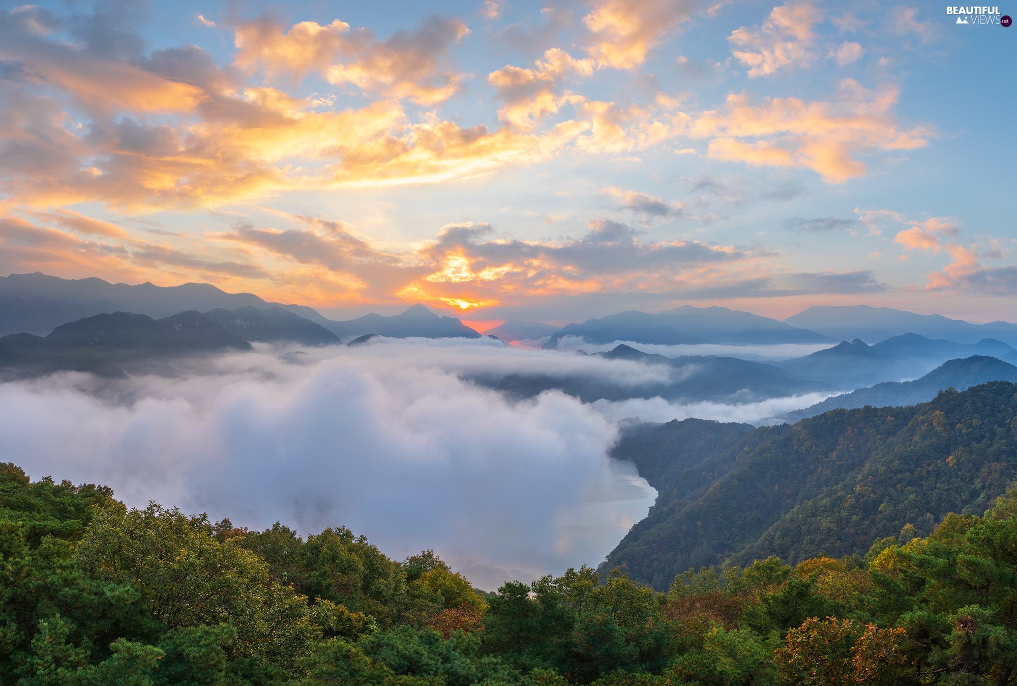 viewes, Fog, Sunrise, trees, Mountains, VEGETATION, clouds
