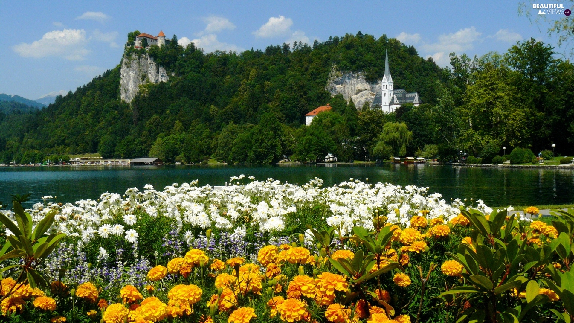 trees, viewes, Castles, Flowers, River