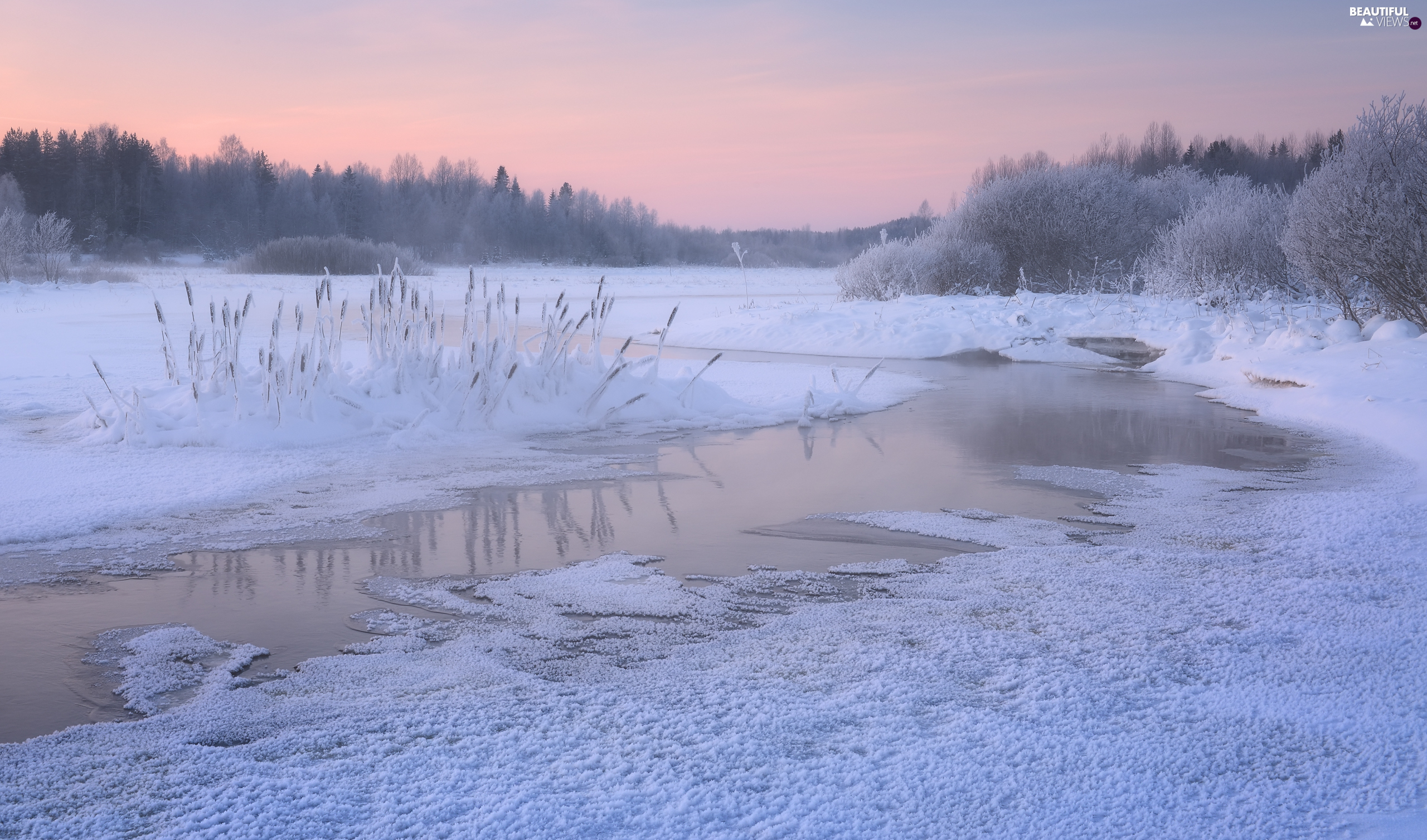 trees, viewes, Russia, Frost, Karelia, River, winter, White frost