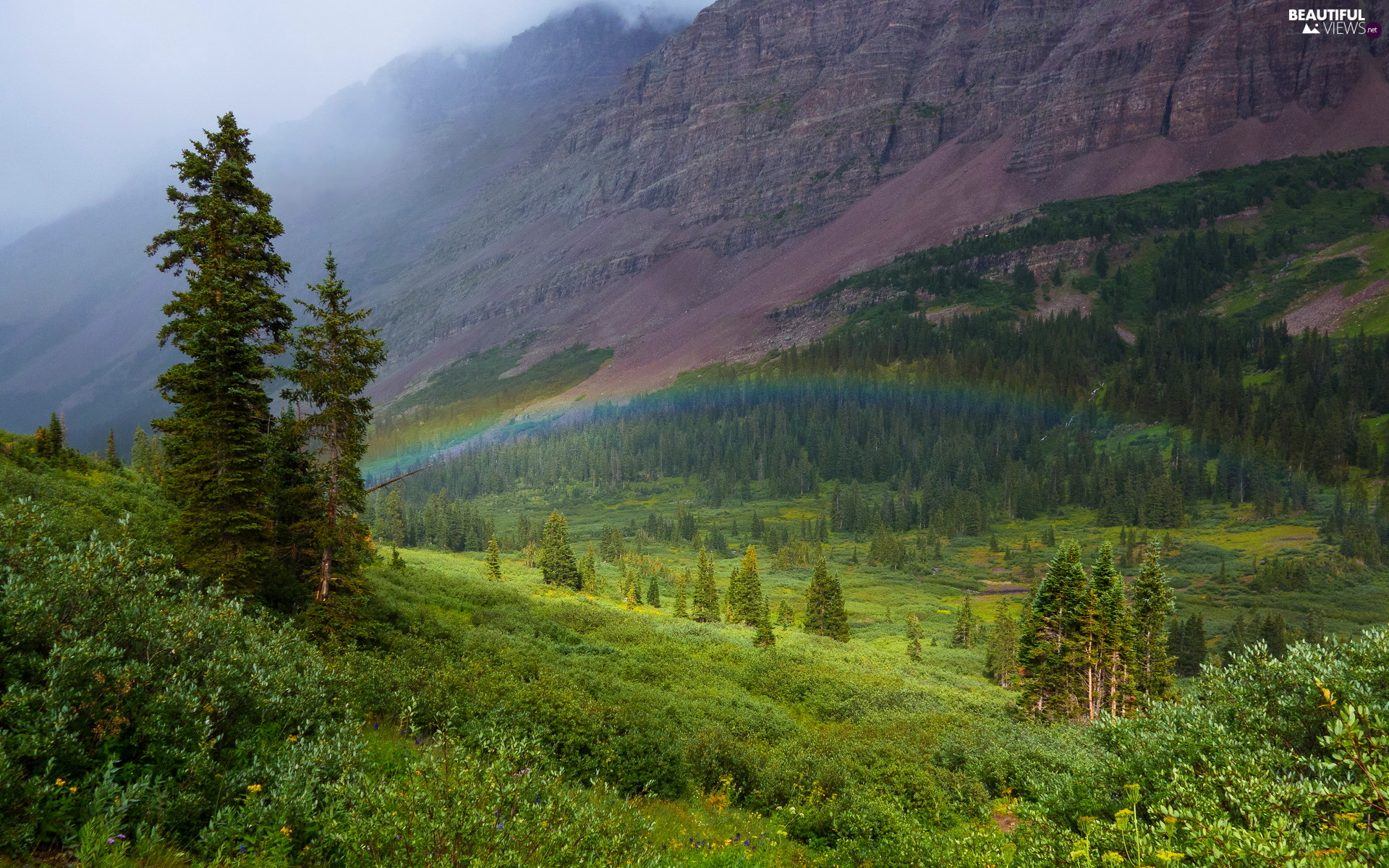 Maroon Bells, mountains, The Hills, trees, Colorado, The United States, Bush, Great Rainbows, viewes
