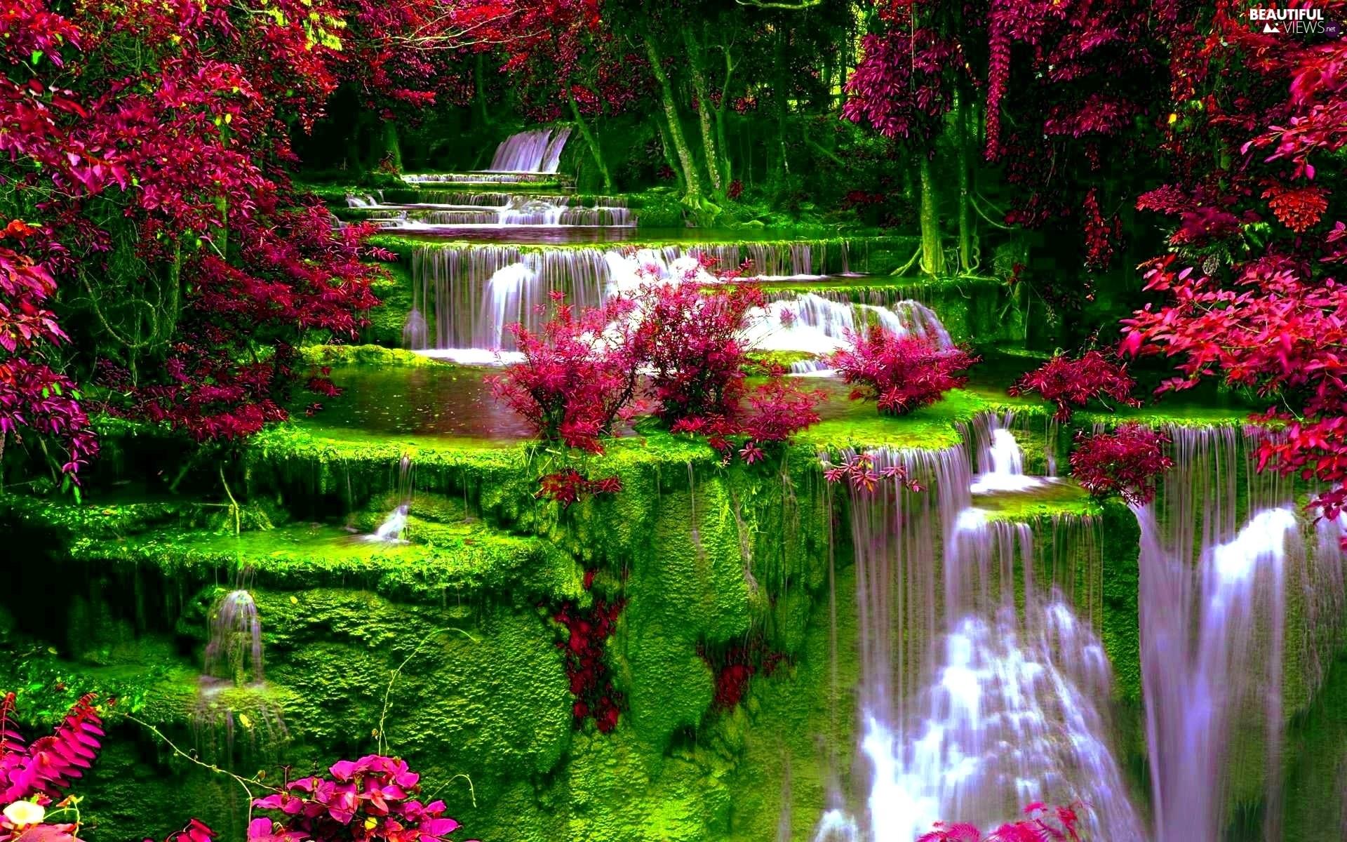 VEGETATION, Waterfall, Flowers
