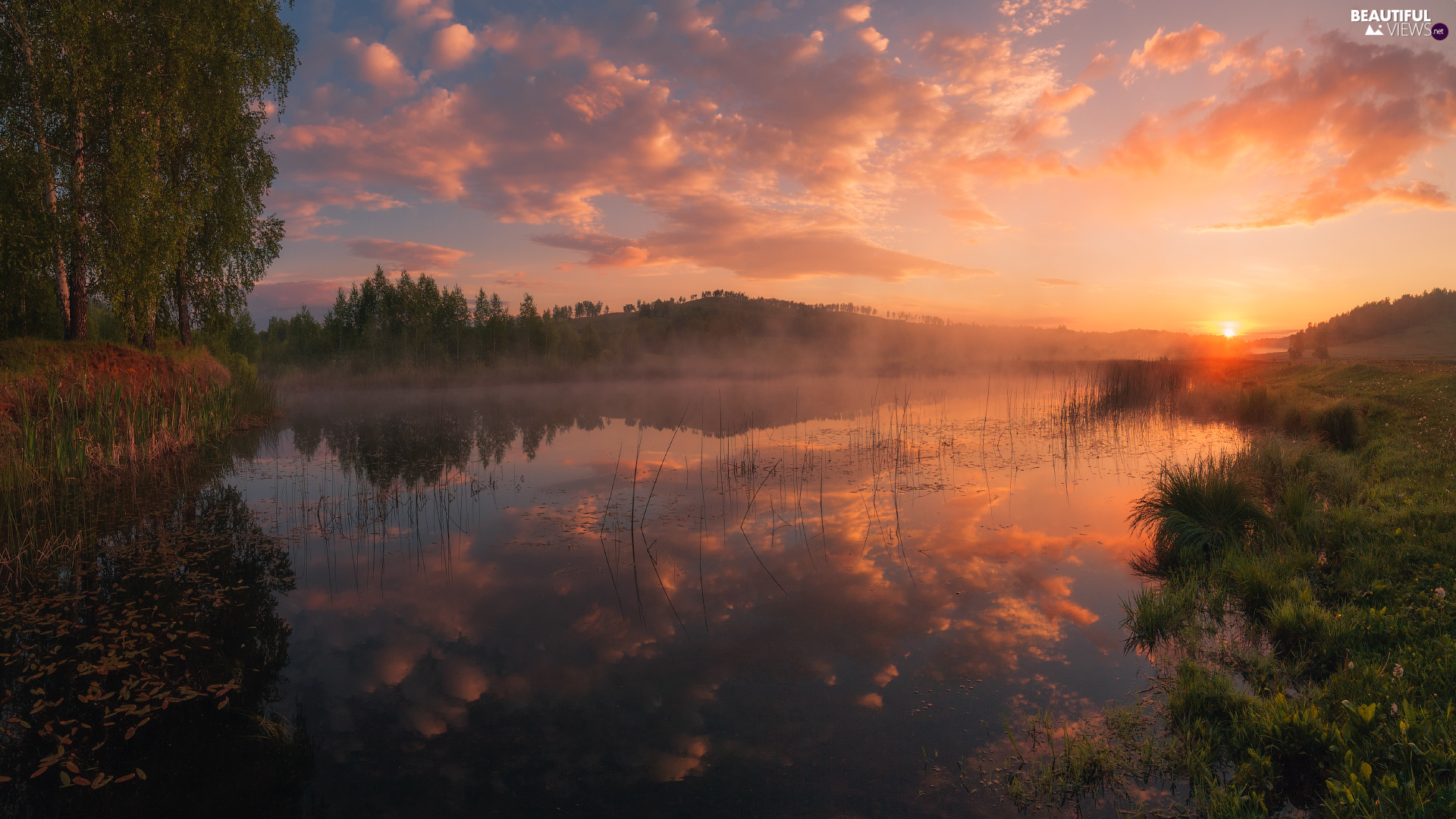 Fog, trees, clouds, viewes, lake, Sunrise, reflection