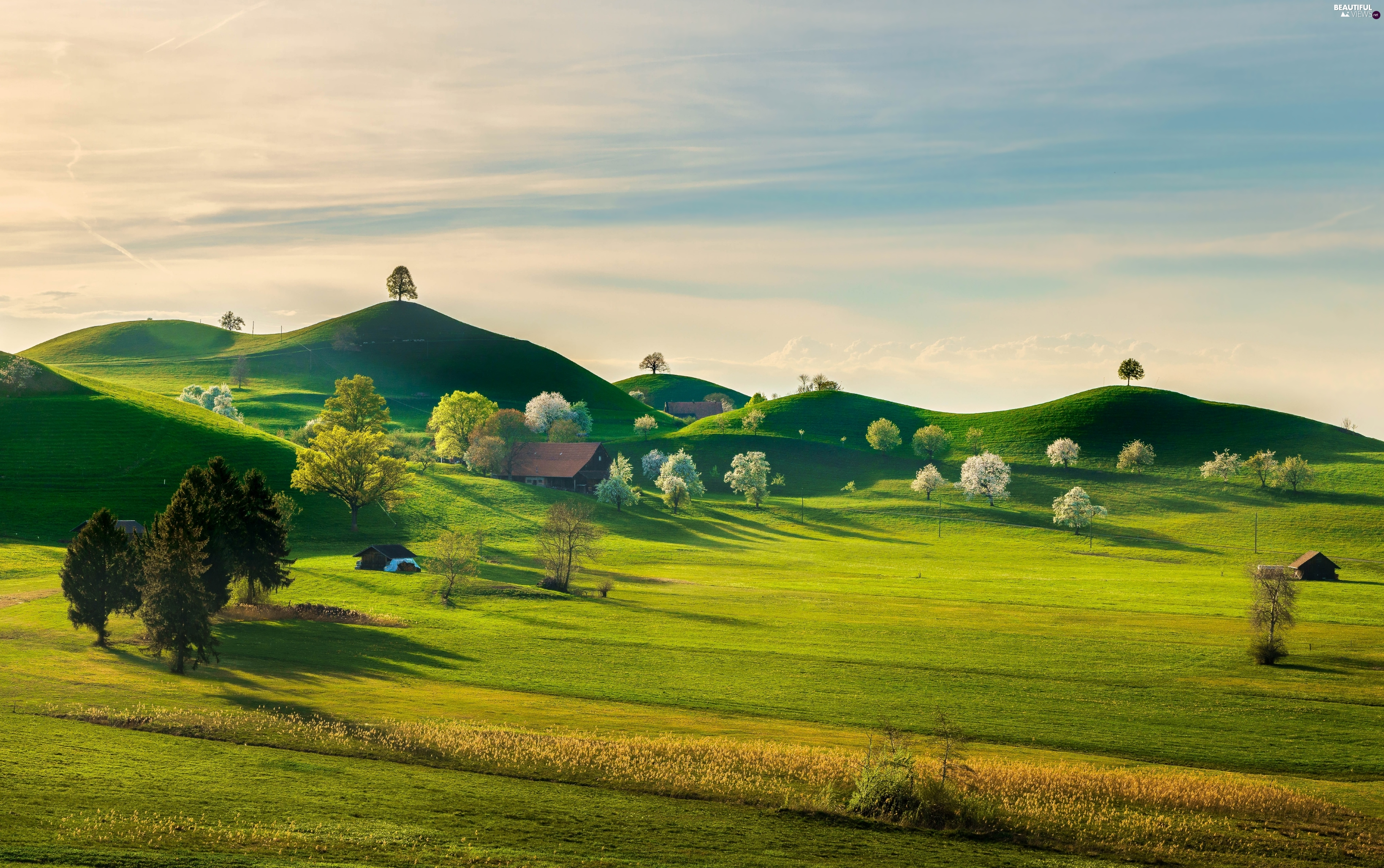 Spring, The Hills, viewes, Houses, trees, field