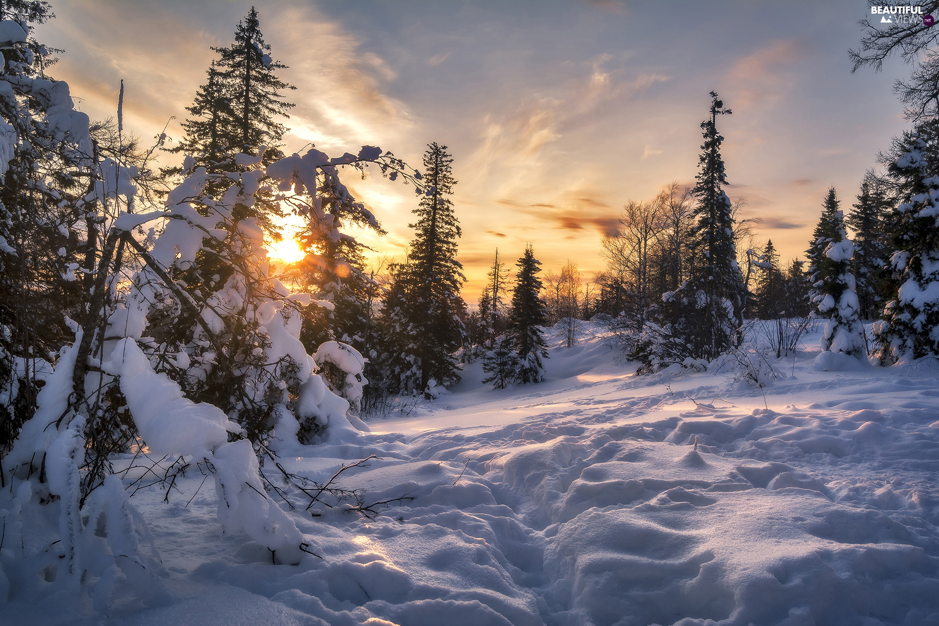 Sunrise, winter, trees, viewes, Snowy, snow