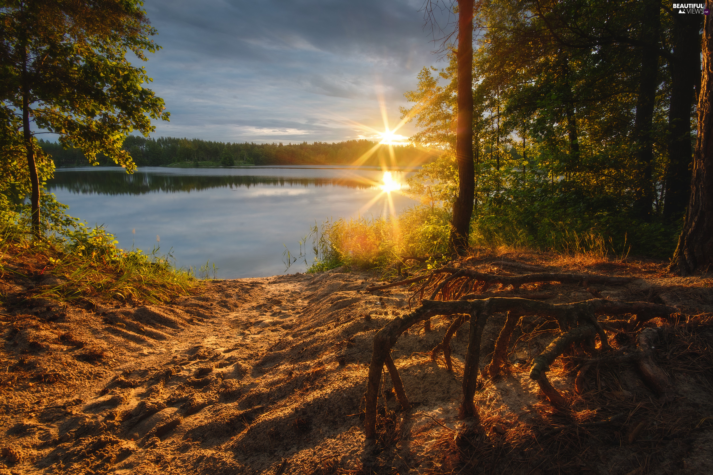 viewes, forest, rays of the Sun, trees, lake, VEGETATION, clouds