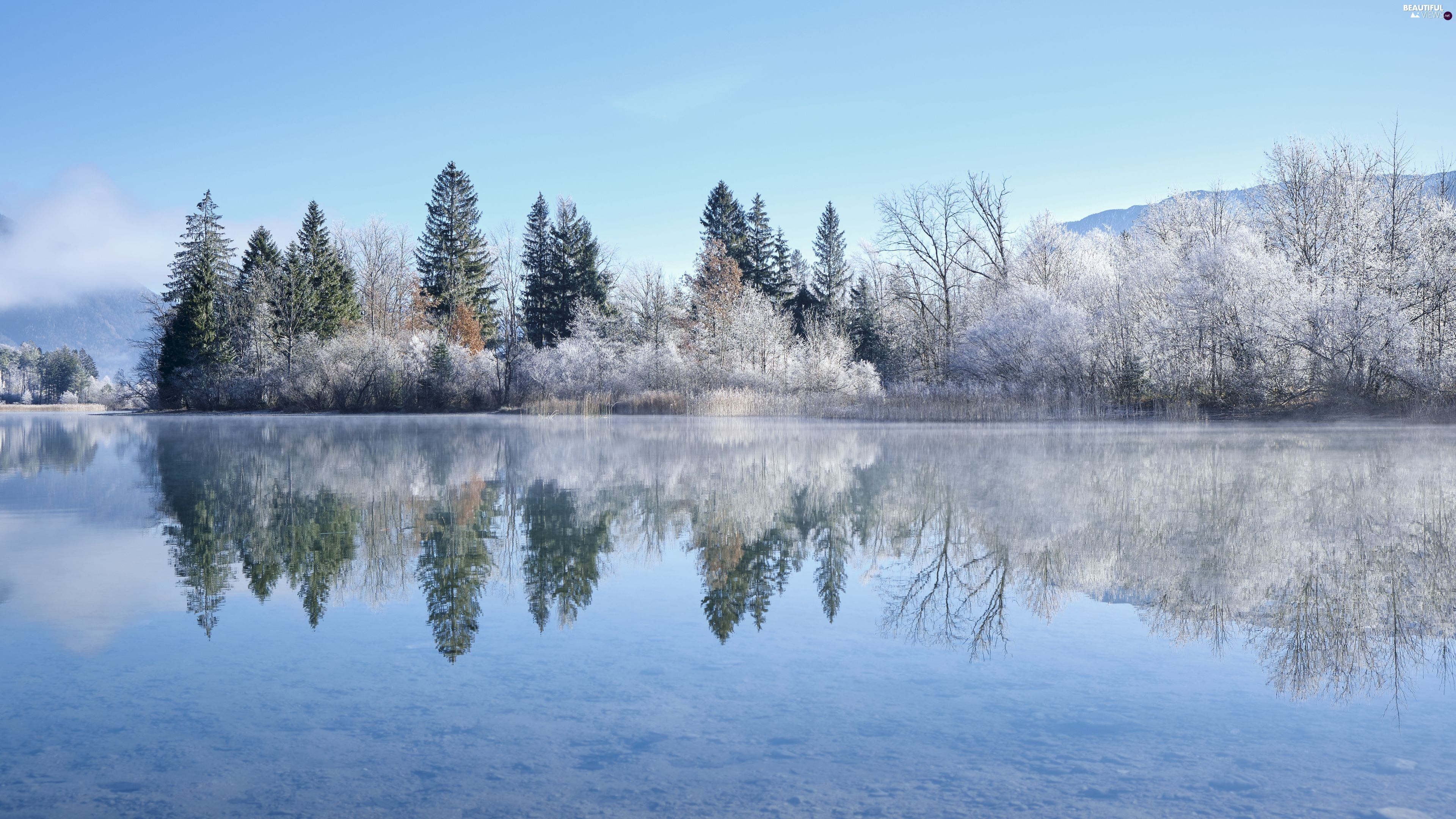 snow, trees, winter, viewes, lake, reflection, Mountains