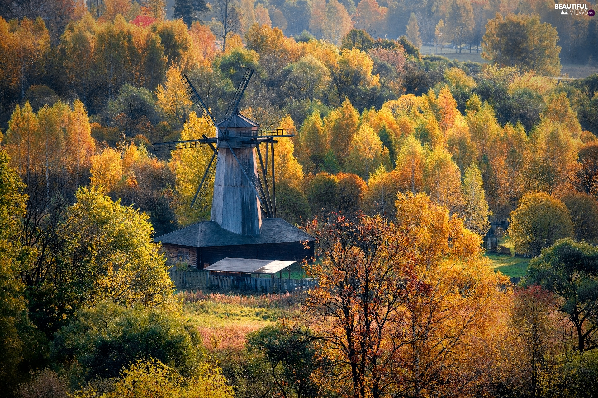 forest, Windmill, trees, viewes, autumn