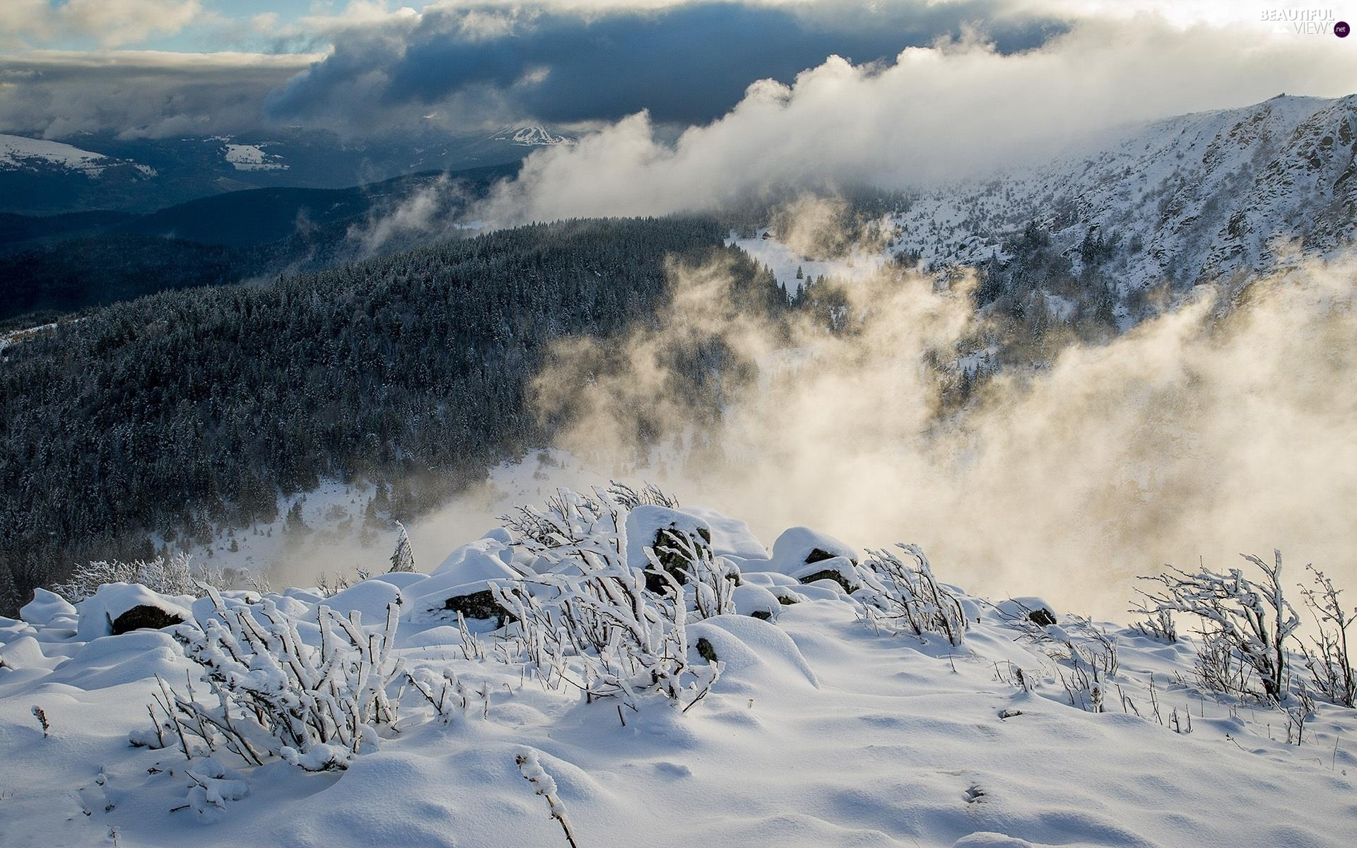 Mountains, clouds, winter, woods