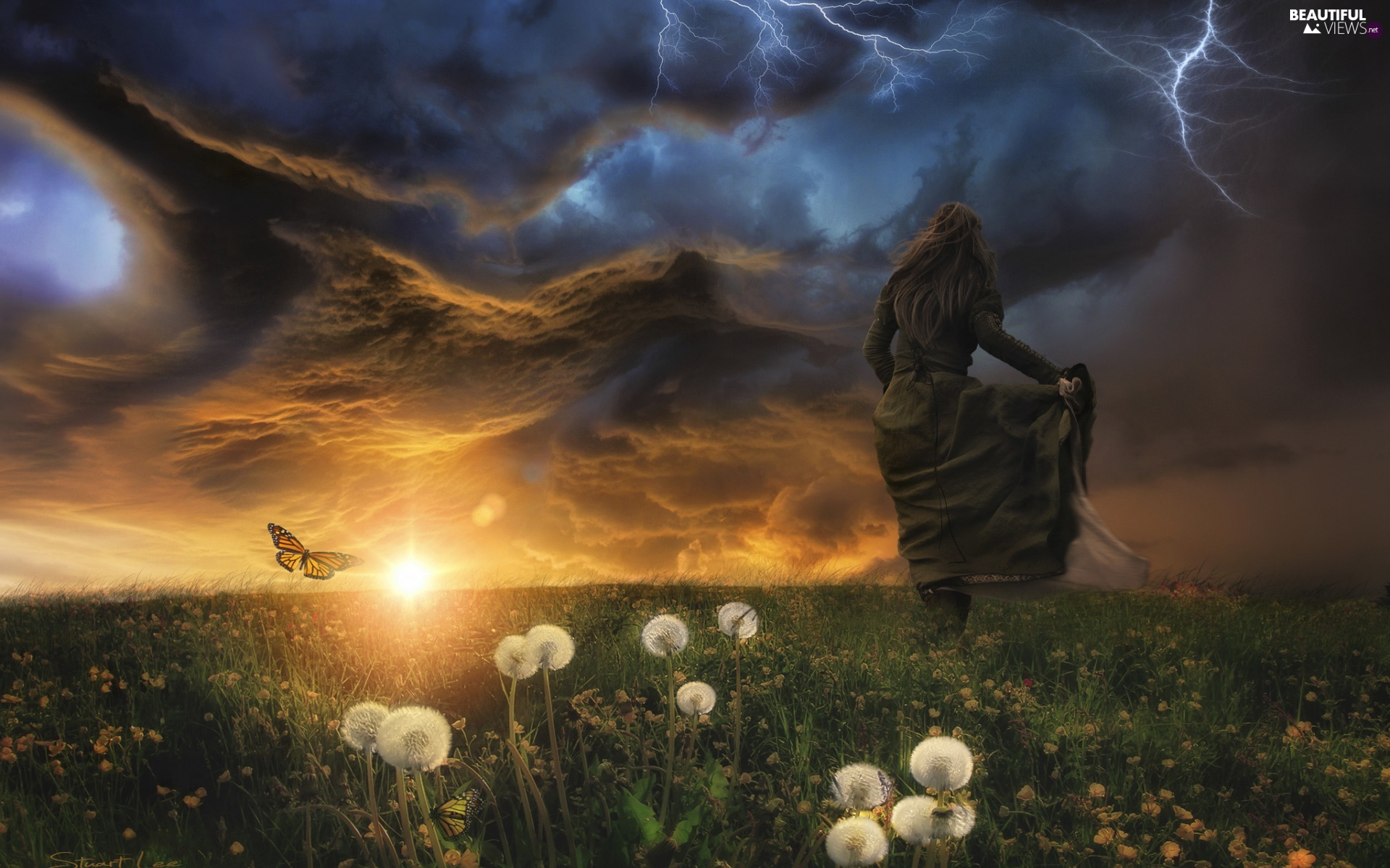 dandelions, Storm, Women, fantasy, butterfly, Meadow